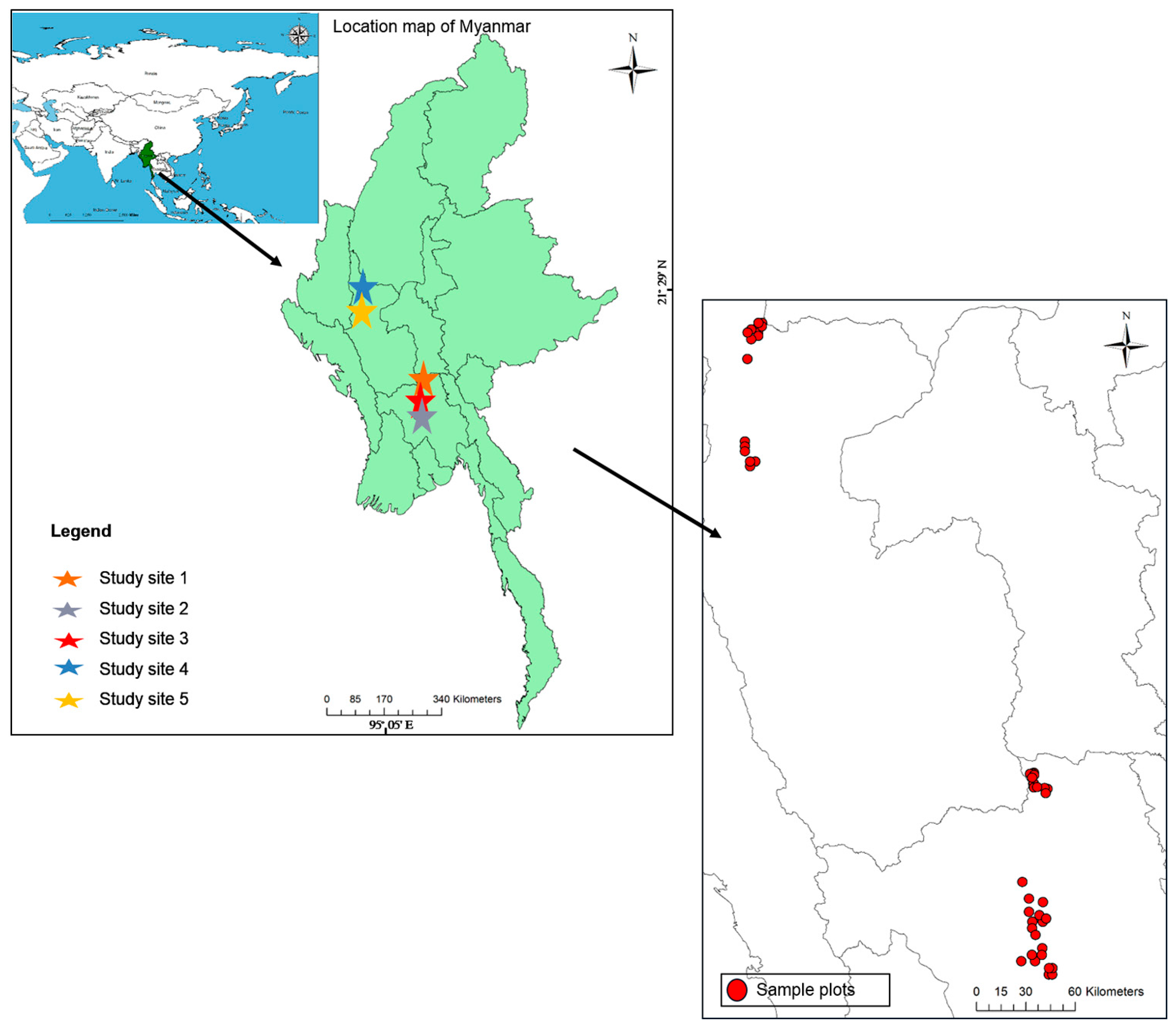 tree structure and species diversity in The community structure, species diversity, and aboveground biomass of mangroves in the lothian island of sundarbans biosphere reserve were estimated and distinct community types were identified.