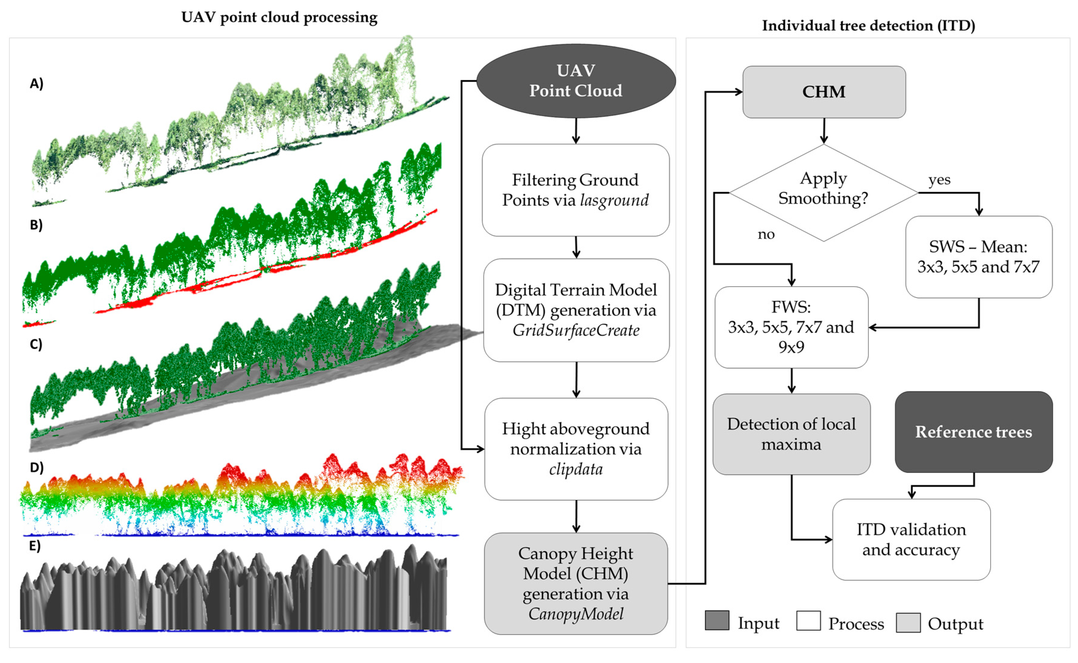 Forests | Free Full-Text | Individual Tree Detection from Unmanned