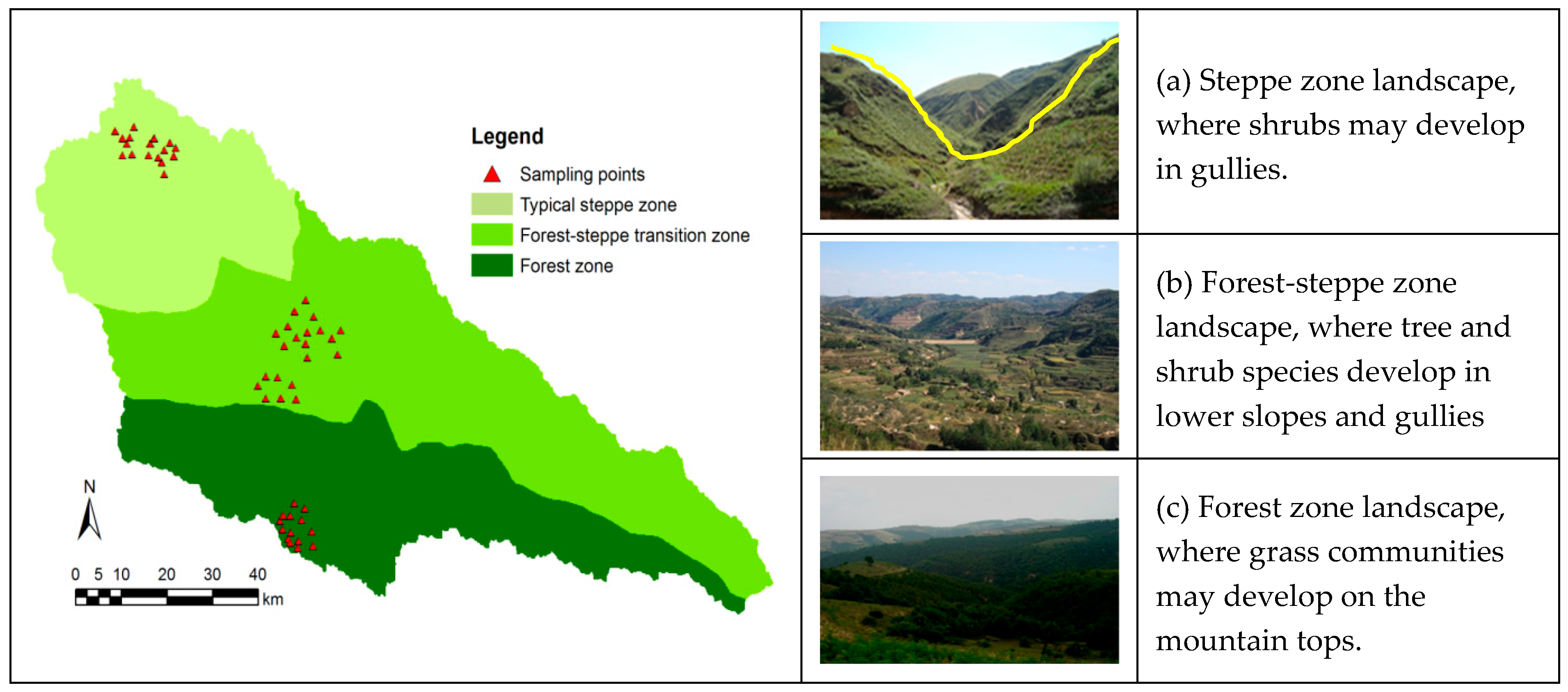 Forests   Free Full-Text   Leaf Trait Variation with Environmental