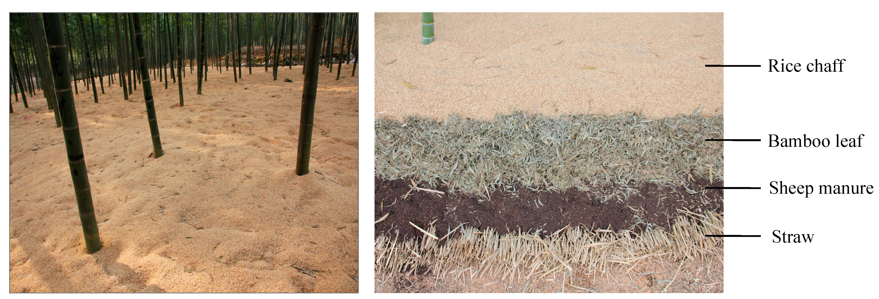 How to and for what to conduct soil mulching
