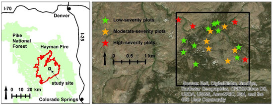 Forests | Special Issue : Wildland Fire, Forest Dynamics