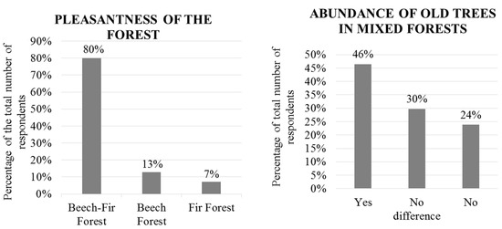 Forests  Special Issue  The Role Of Forests For Achieving The  Open  English Essay Question Examples also Academic Writing Assistance Agency  Financial Accounting Assignment Help