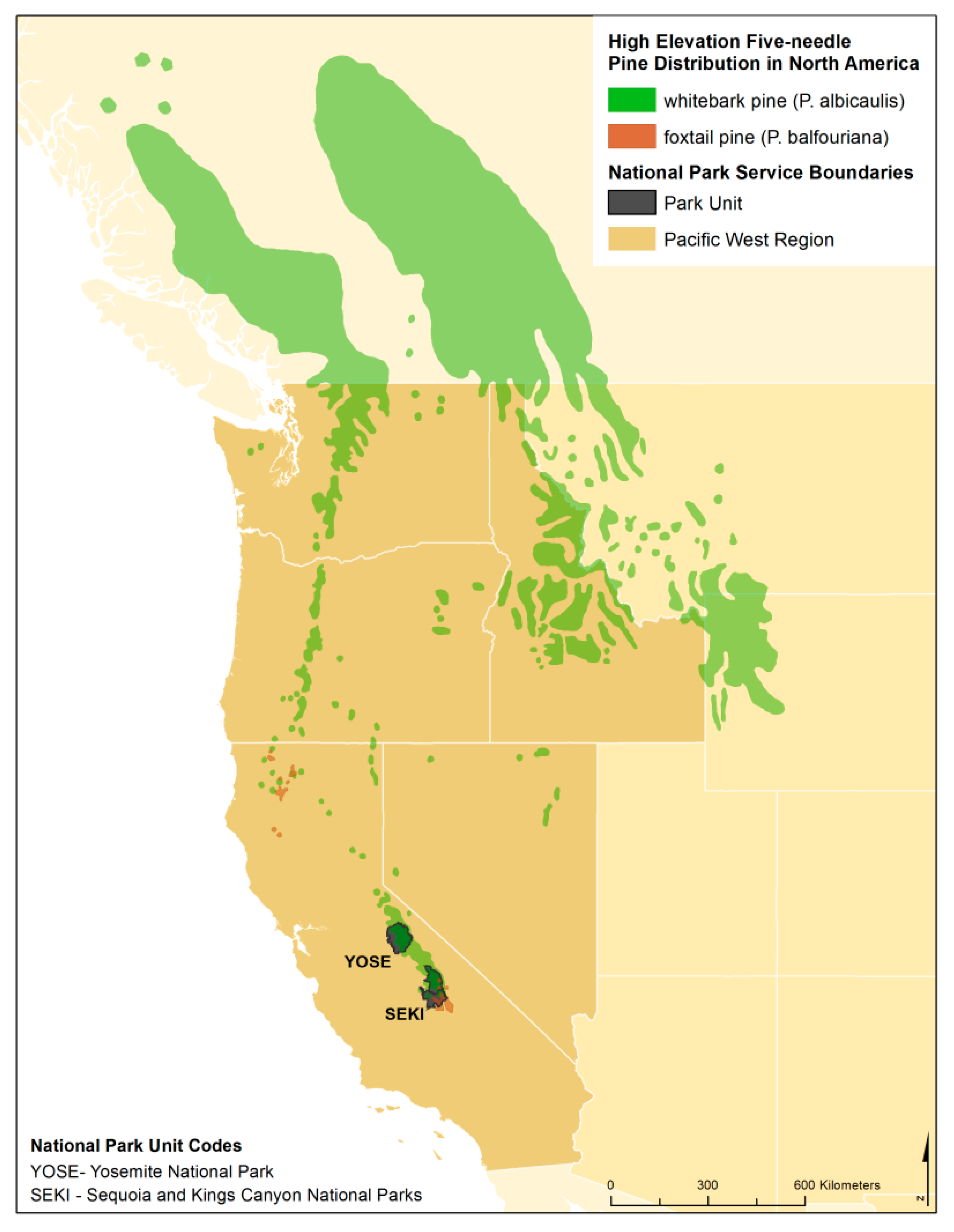 Forests | Free Full-Text | Whitebark and Foxtail Pine in