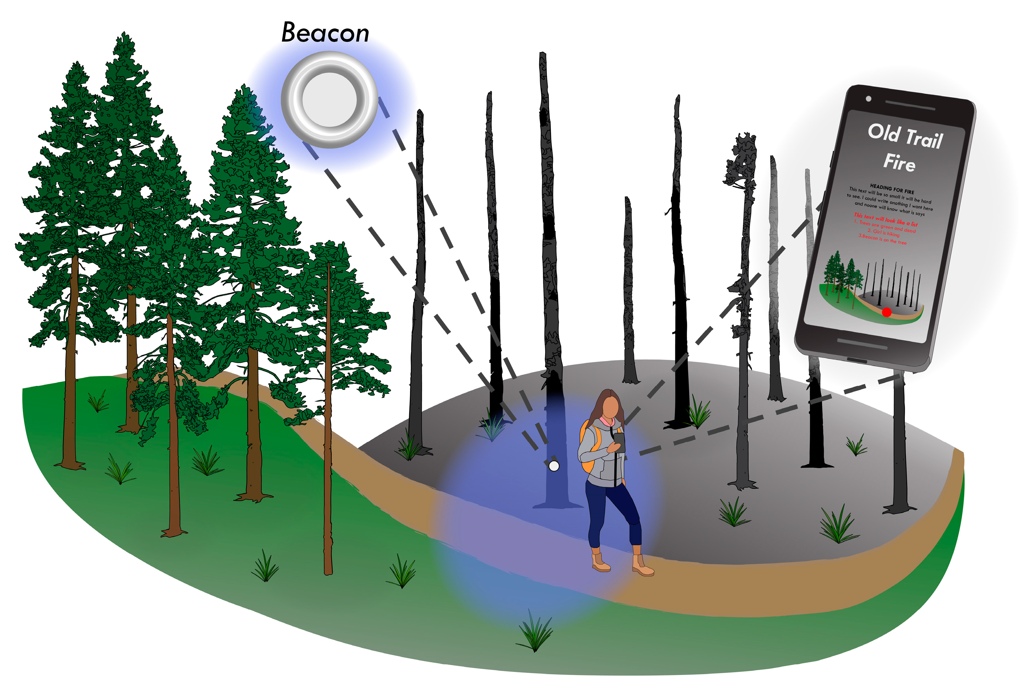Forests | Free Full-Text | Positioning Methods and the Use