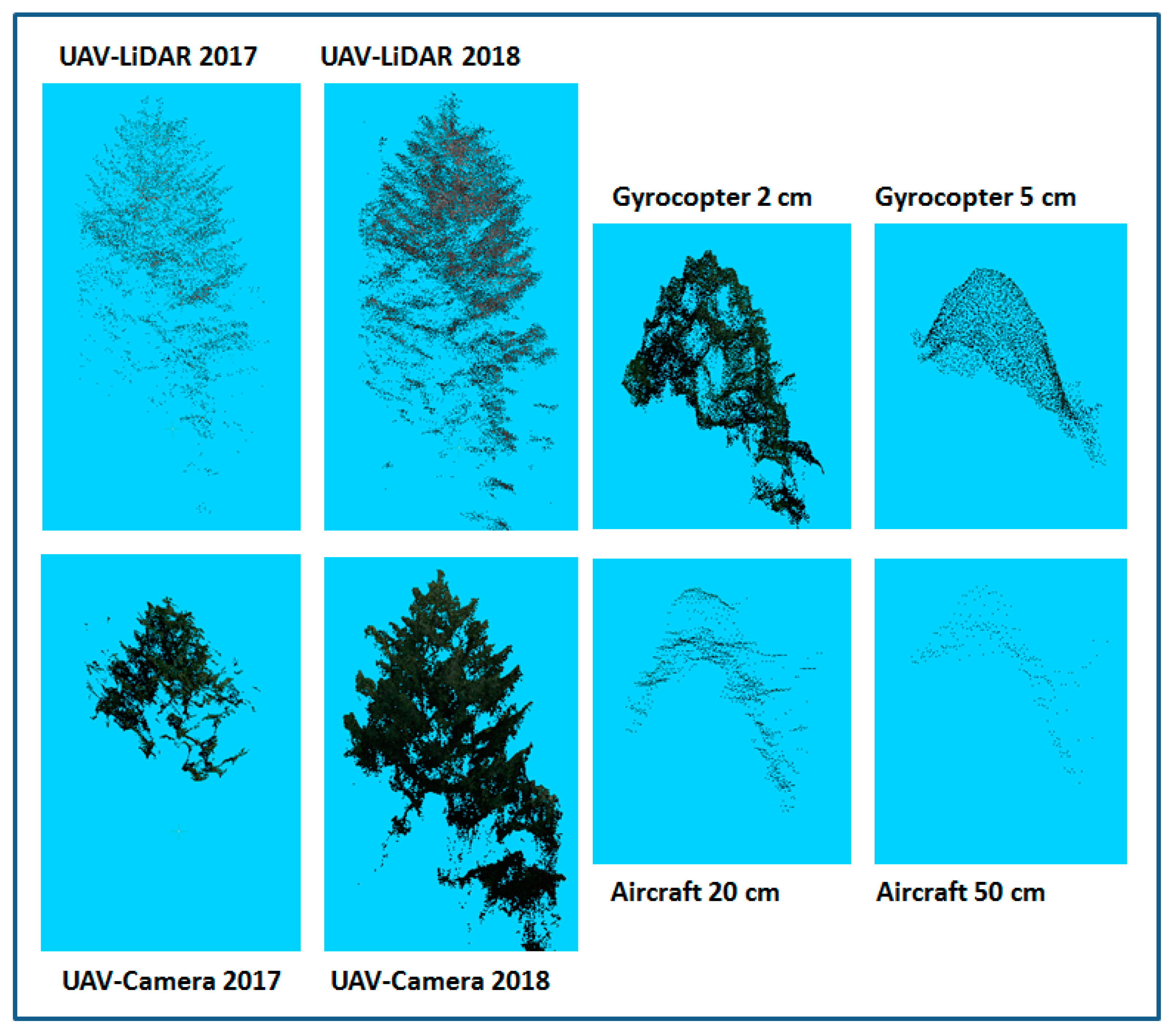 Forests | Free Full-Text | Measuring Tree Height with Remote