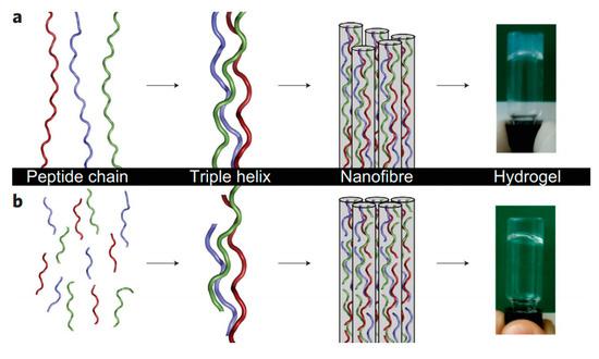 Gels   Free Full-Text   Beyond Covalent Crosslinks