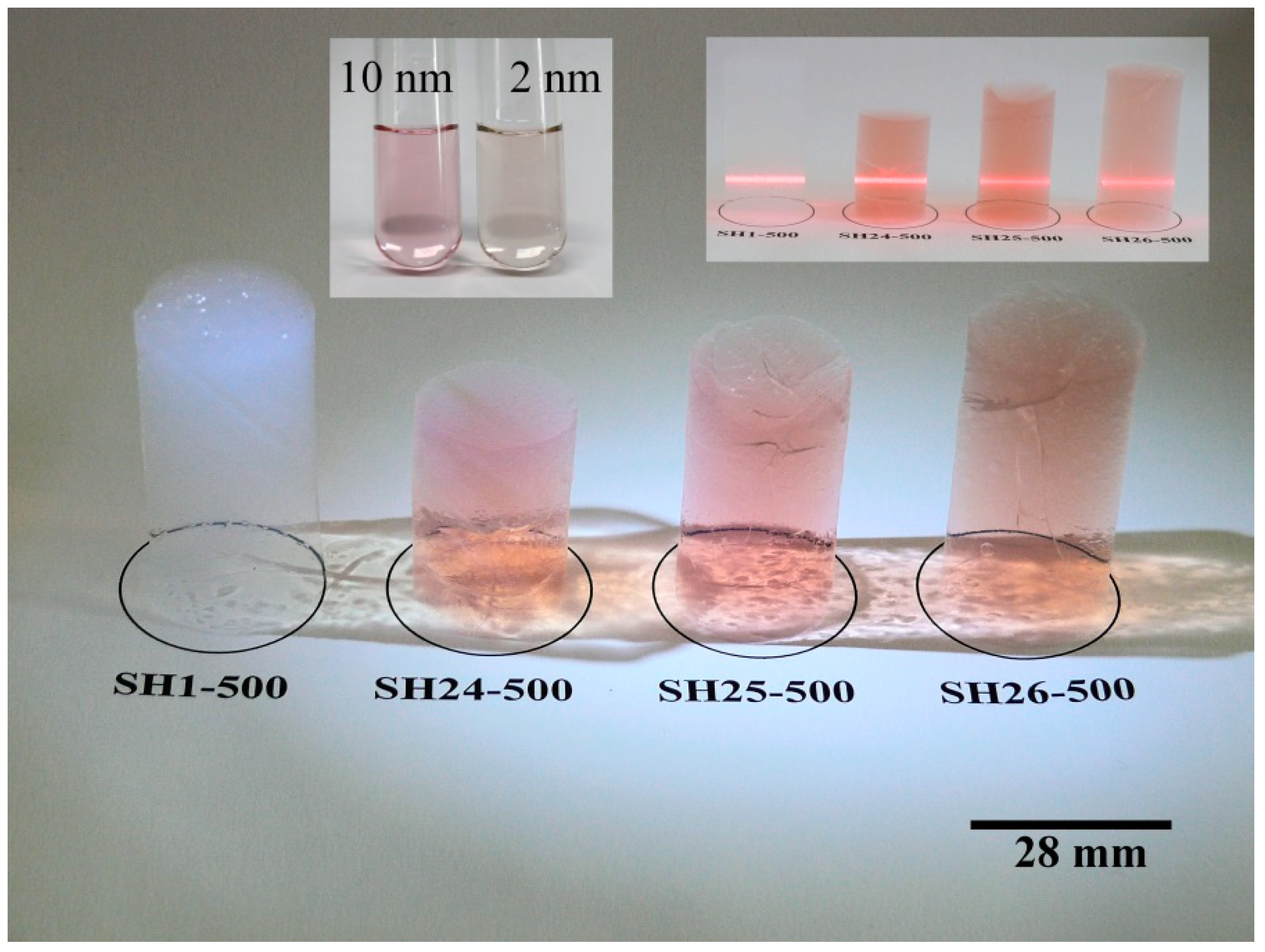 Gels | Free Full-Text | Prevention of the Aggregation of