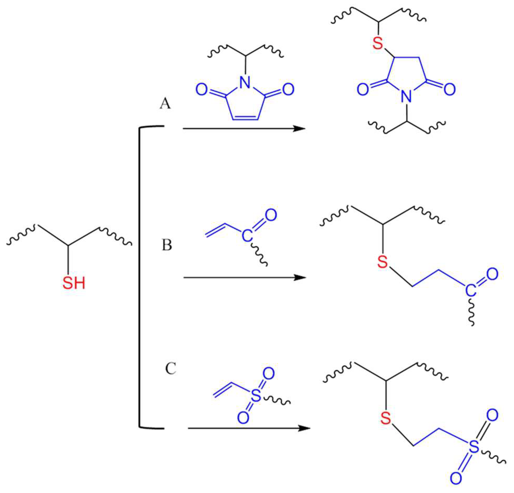 Gels Free Full Text Thiol Mediated Chemoselective