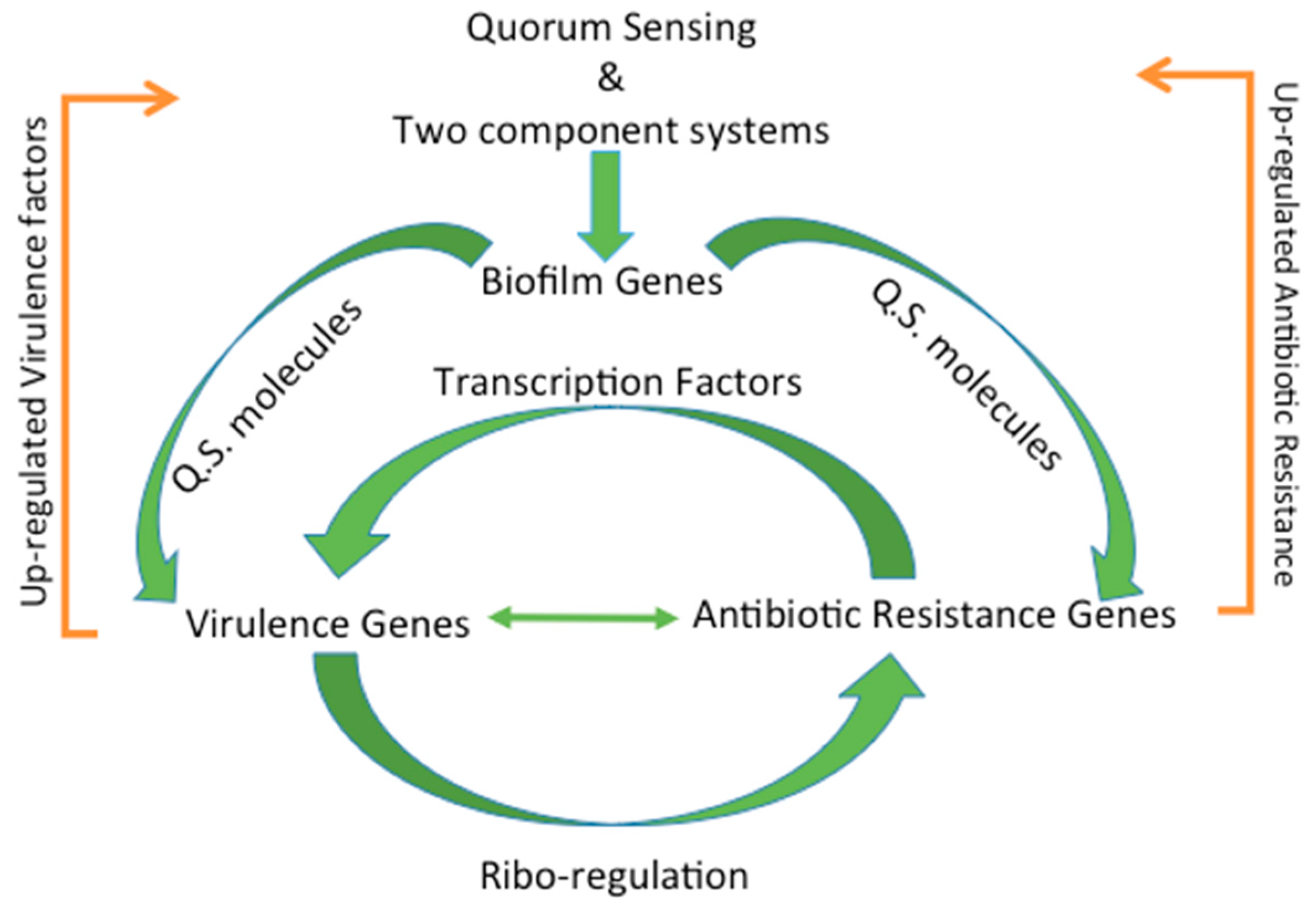 Genes | Free Full-Text | The Complex Relationship between