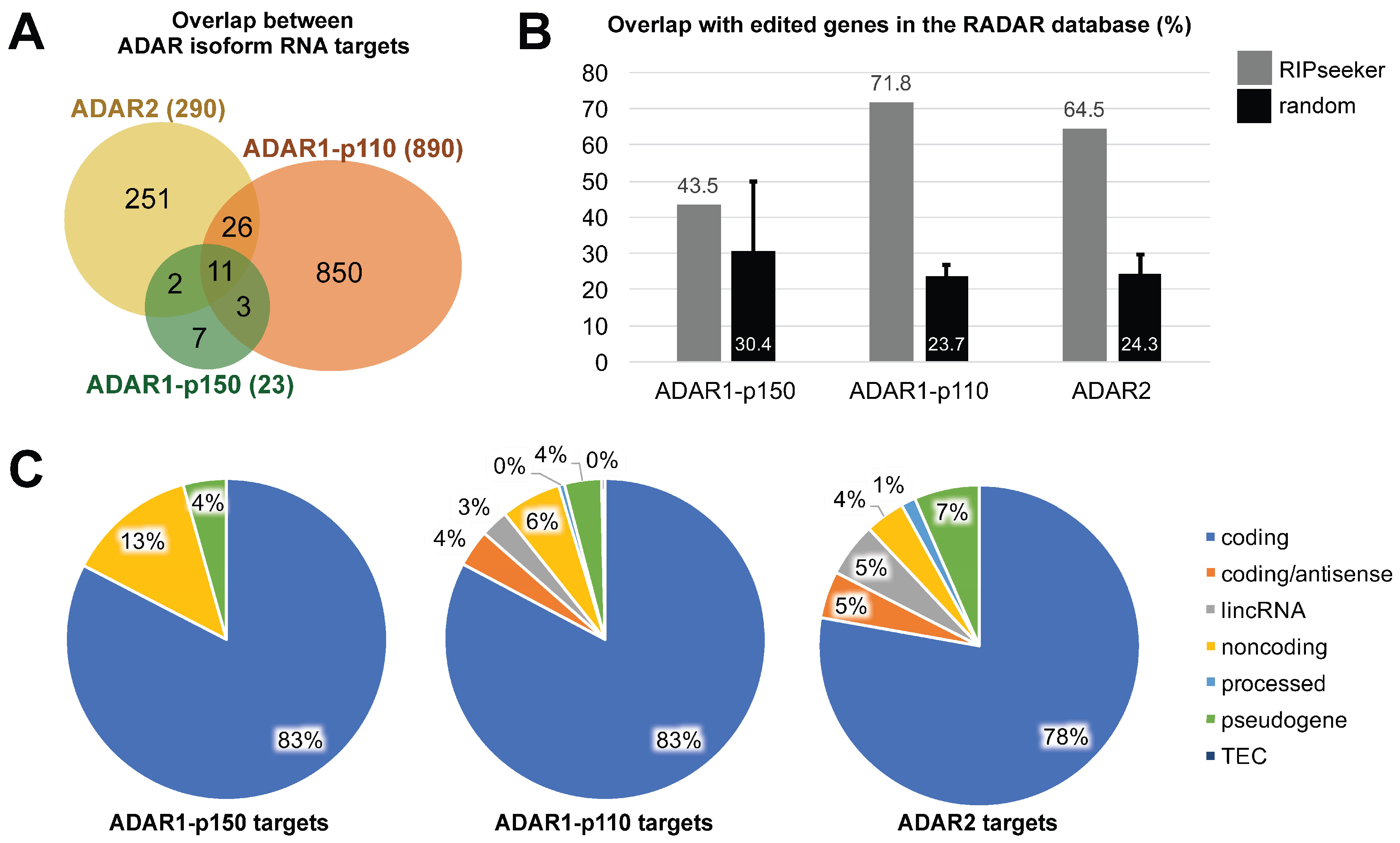 Differential Binding of Three Major Human ADAR Isoforms to Coding and Long Non-Coding Transcripts