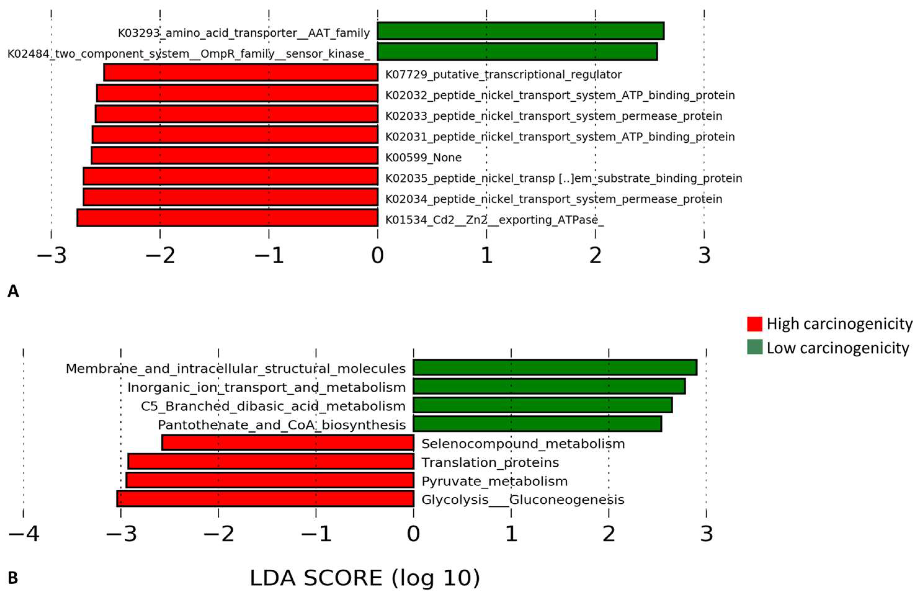 Genes   Free Full-Text   Differences in the Bacteriome of