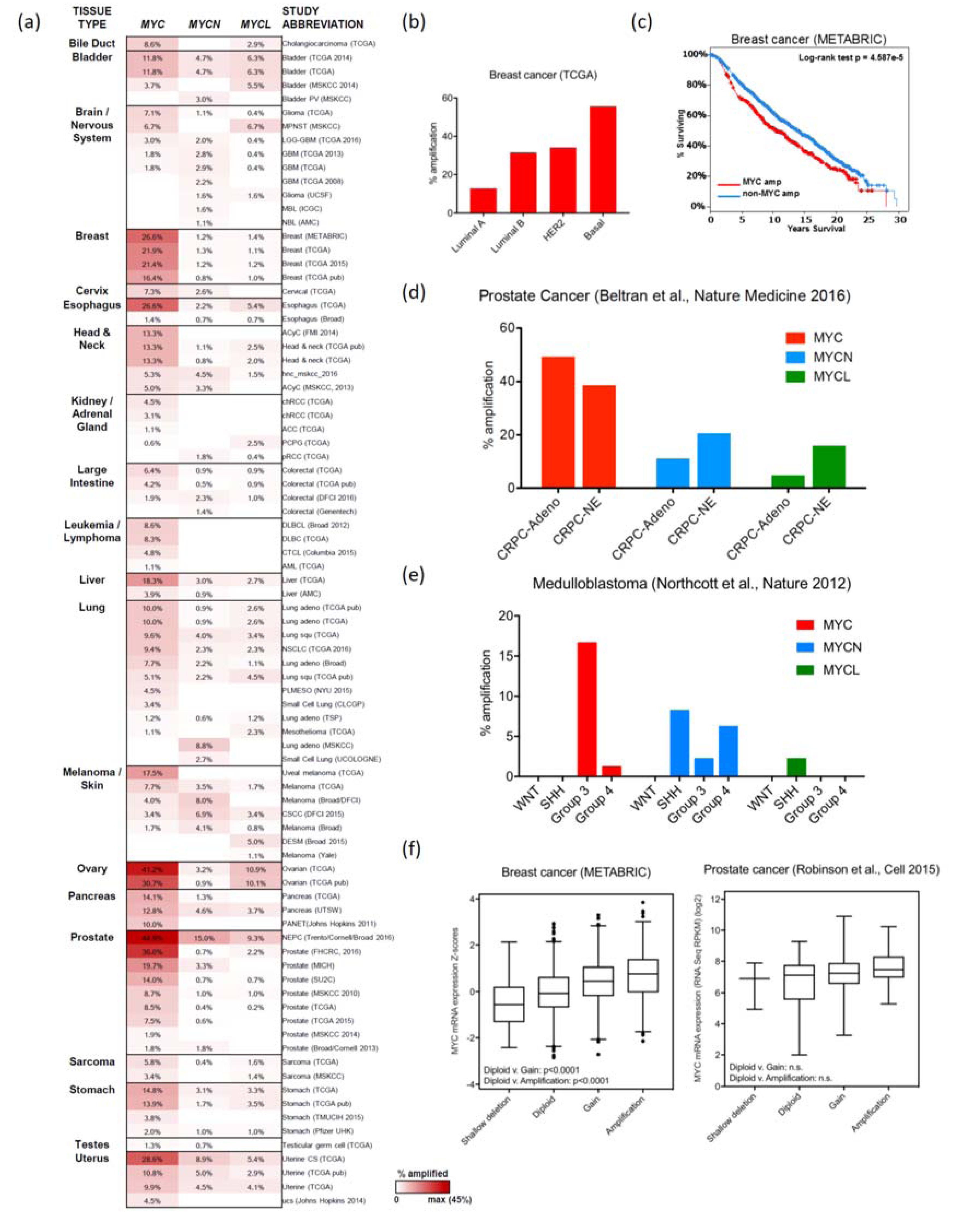 genes free full text myc deregulation in primary human cancers