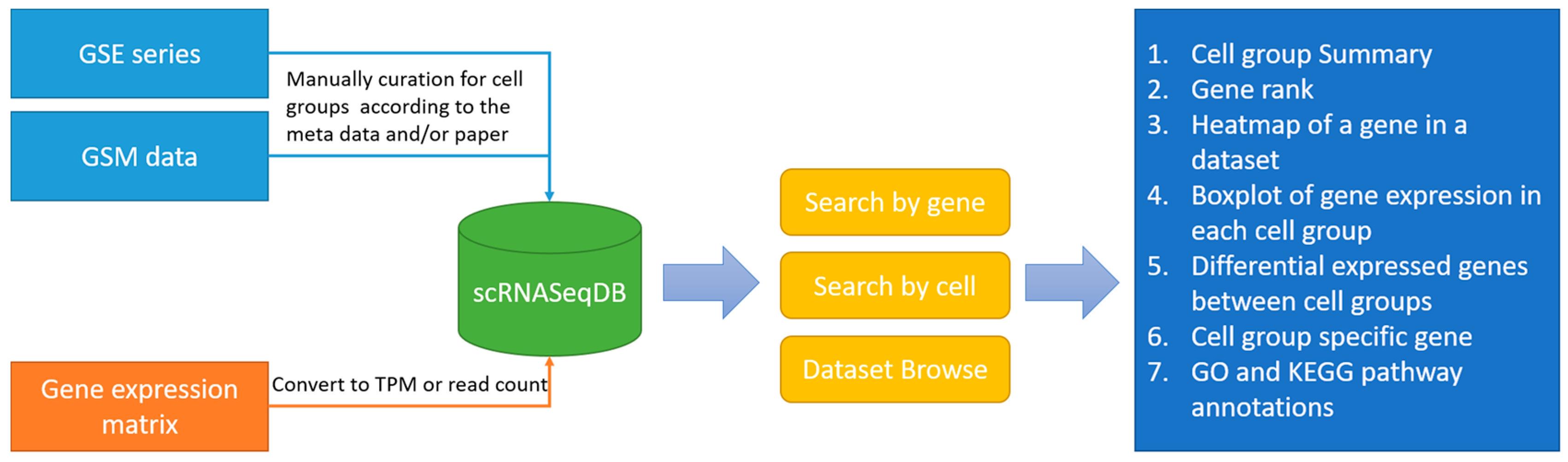 Genes | Free Full-Text | scRNASeqDB: A Database for RNA-Seq Based