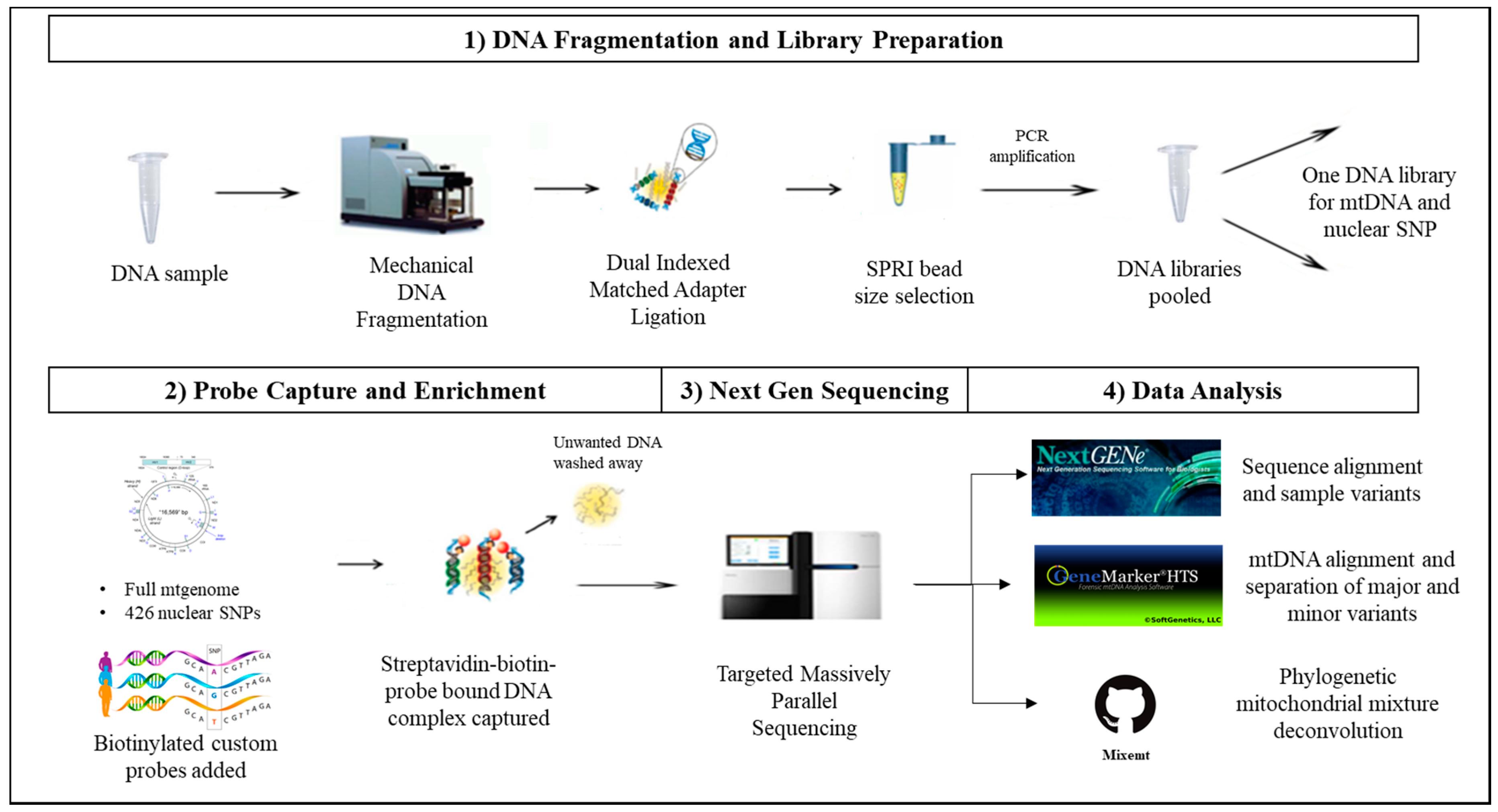 Download Software application program pdf