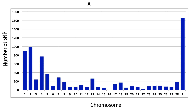 Genes   Free Full-Text   Exploring Genomic Variants Related