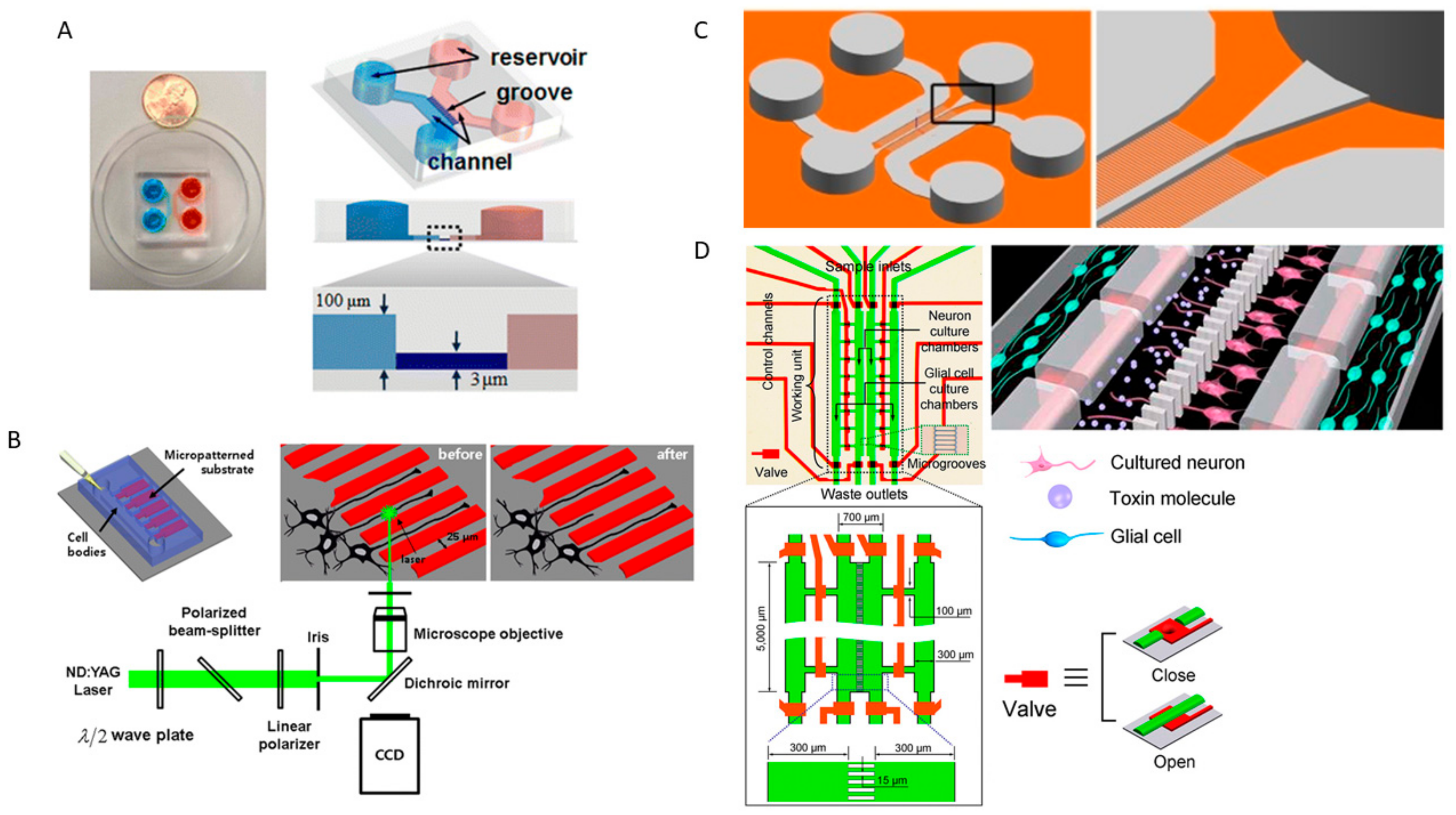 Genes Free Full Text Development Of Microplatforms To Mimic The Mf 1130 Wiring Diagram 09 00285 G005 Figure 5 Schematic
