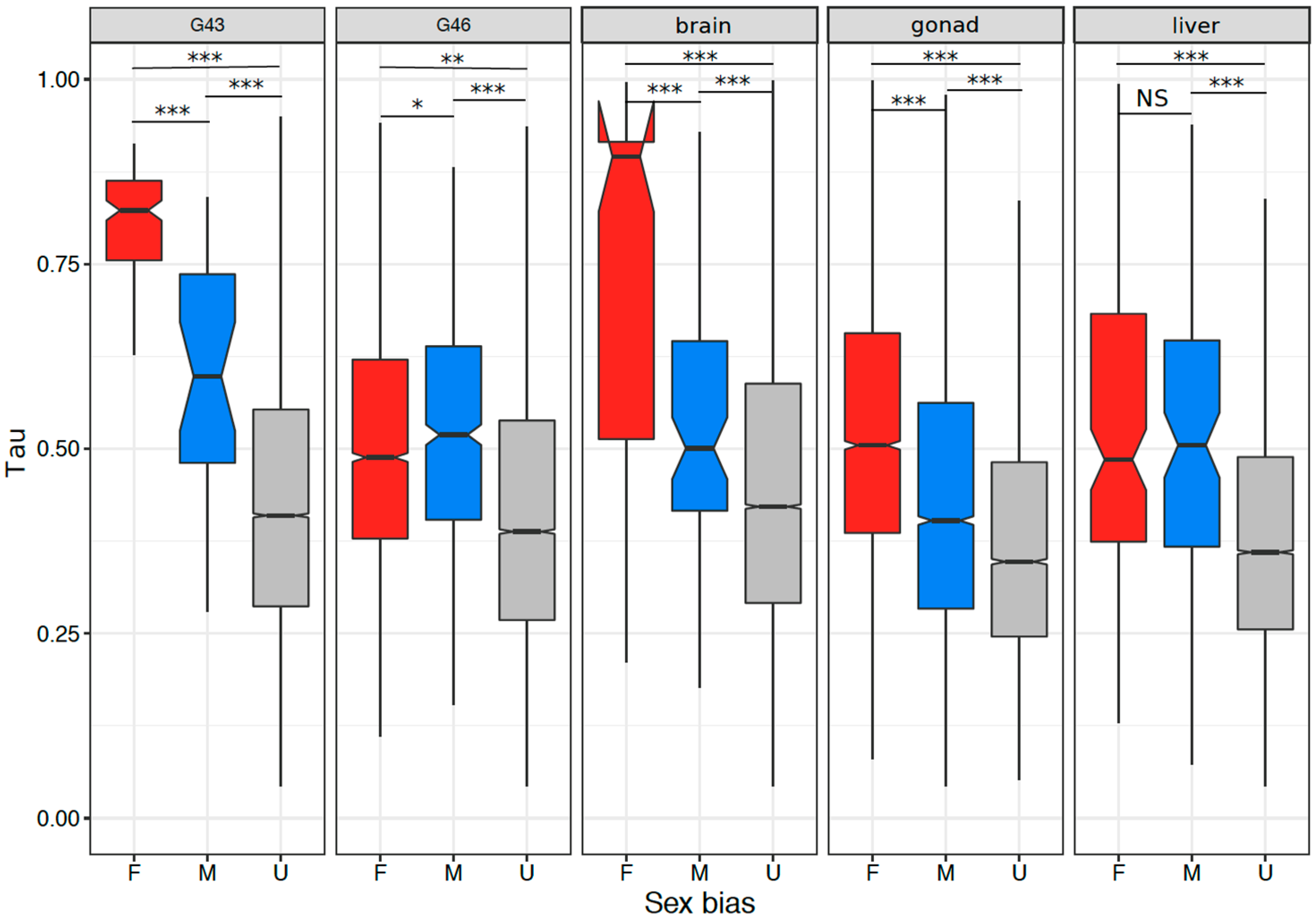 homomorphic sex chromosome definition biology in Woking