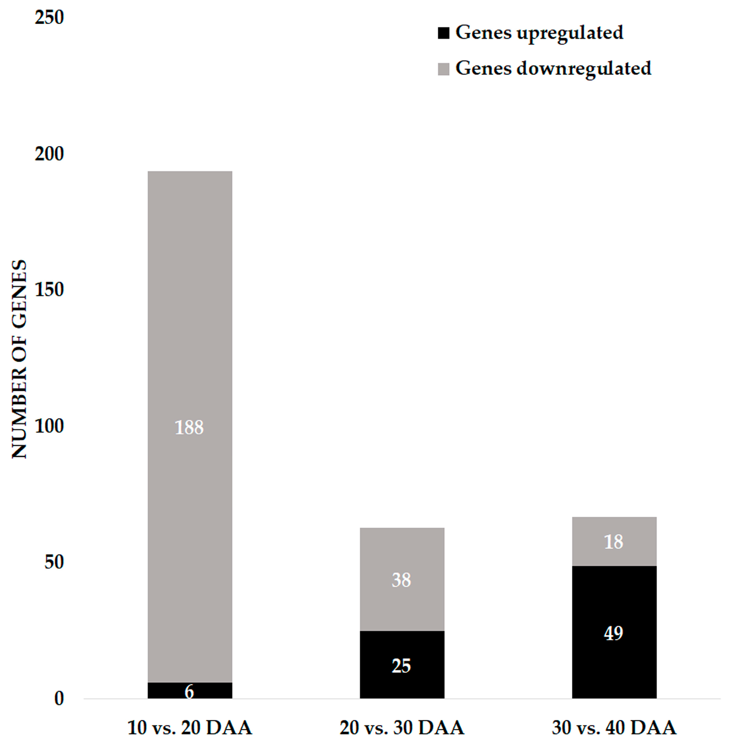 Genes Free FullText Maintaining Genome Integrity During Seed - How to create a commercial invoice online bead stores