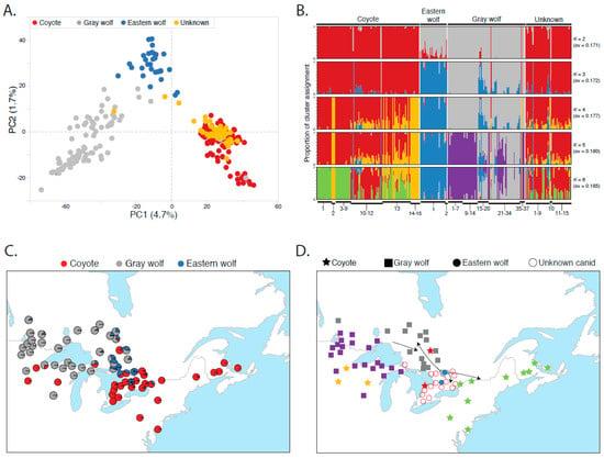 Genes   Free Full-Text   Population Genomic Analysis of
