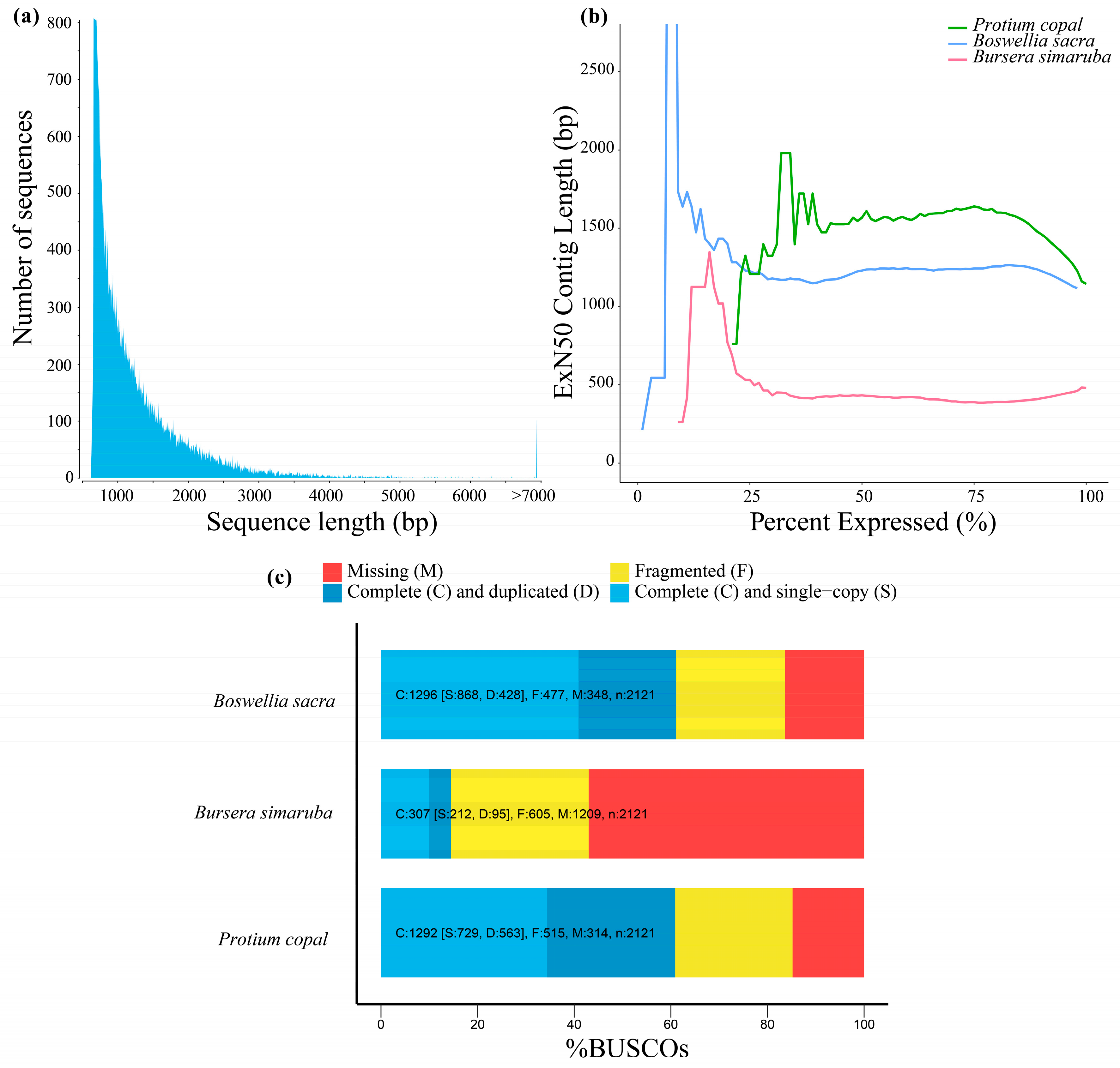 Genes Can Have Up To 80 Percent >> Genes Free Full Text Leaf Transcriptome Assembly Of Protium
