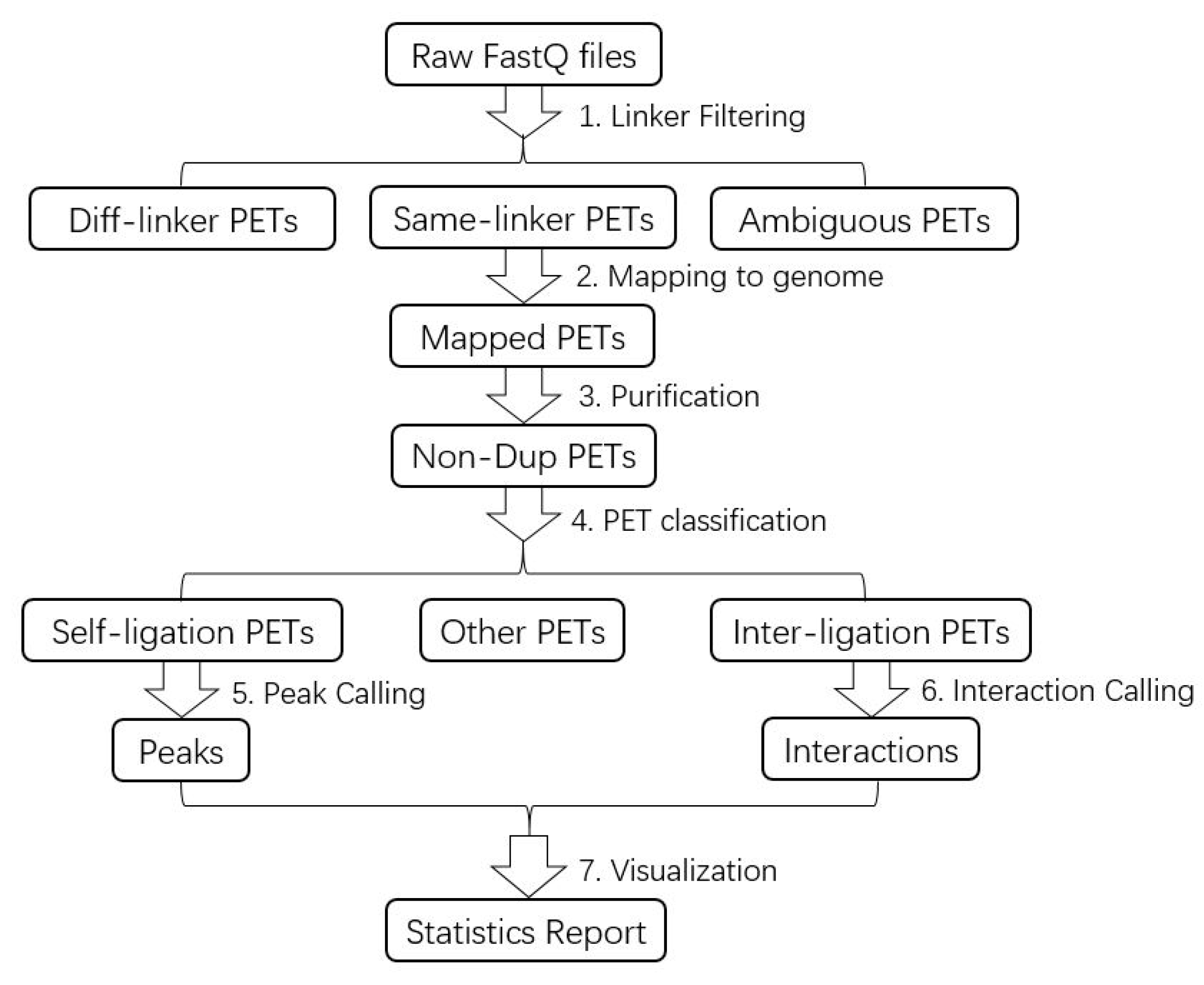 Genes   Free Full-Text   Chromatin Interaction Analysis with
