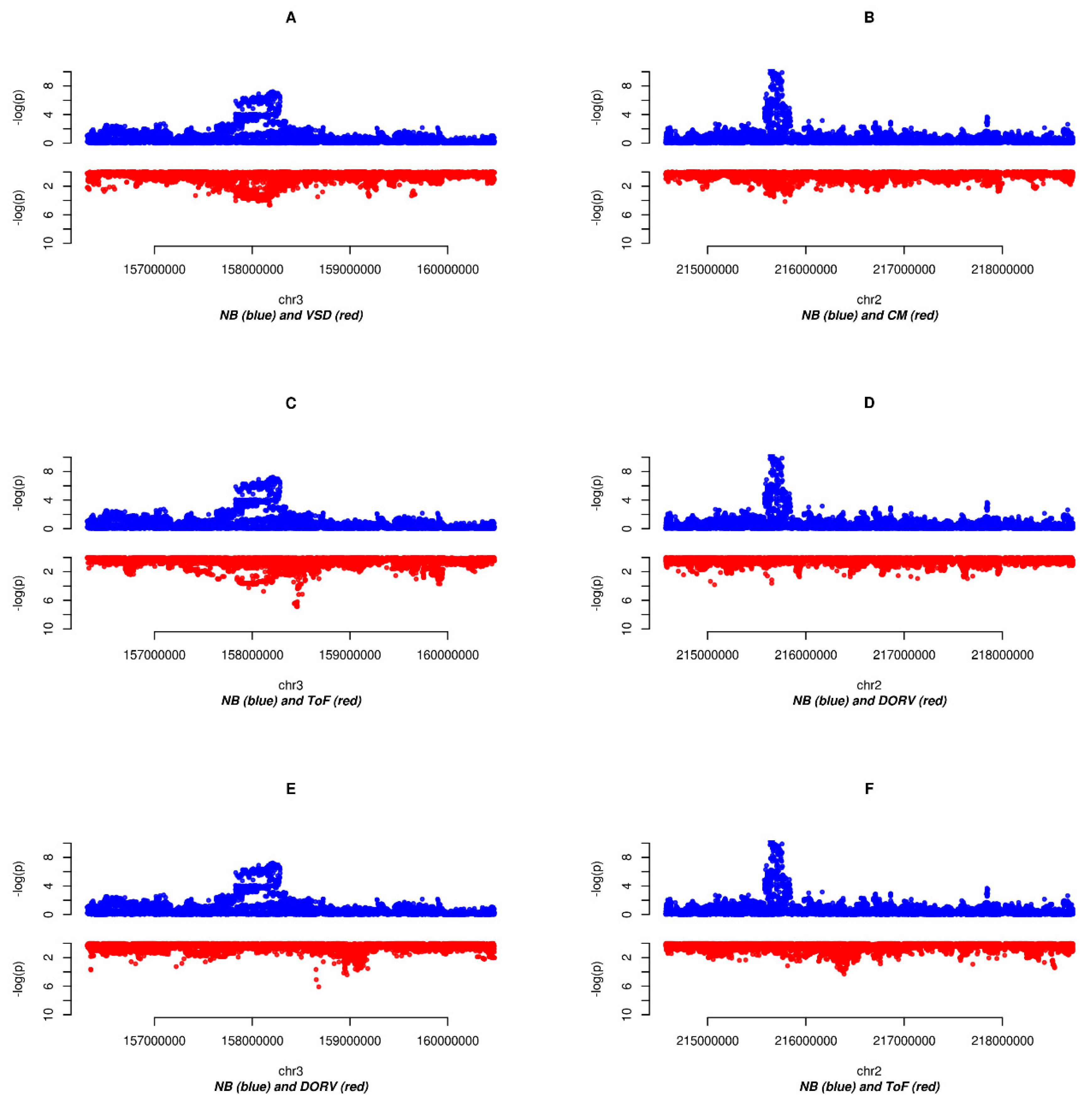 Genes | Free Full-Text | Exploring Shared Susceptibility