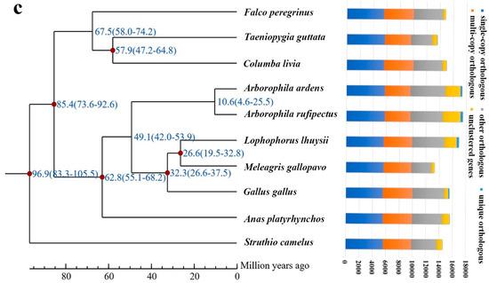 Genes | An Open Access Journal from MDPI