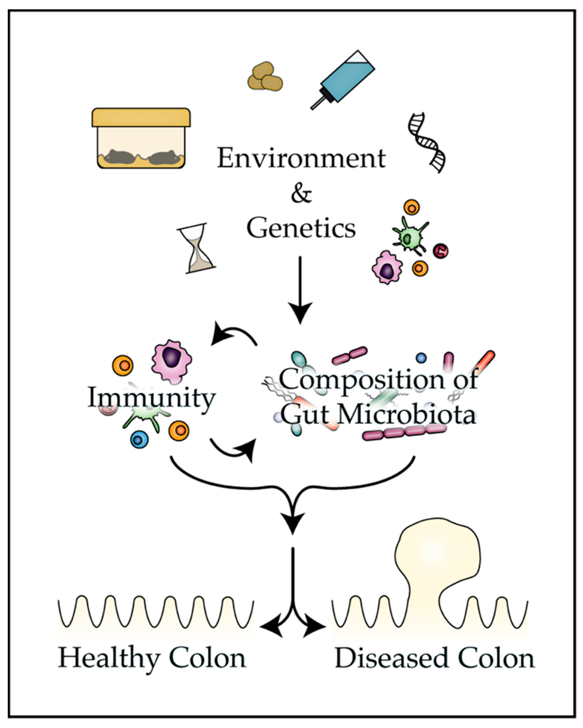 Genes Free Full Text Gut Microbiota Influences Experimental Outcomes In Mouse Models Of Colorectal Cancer