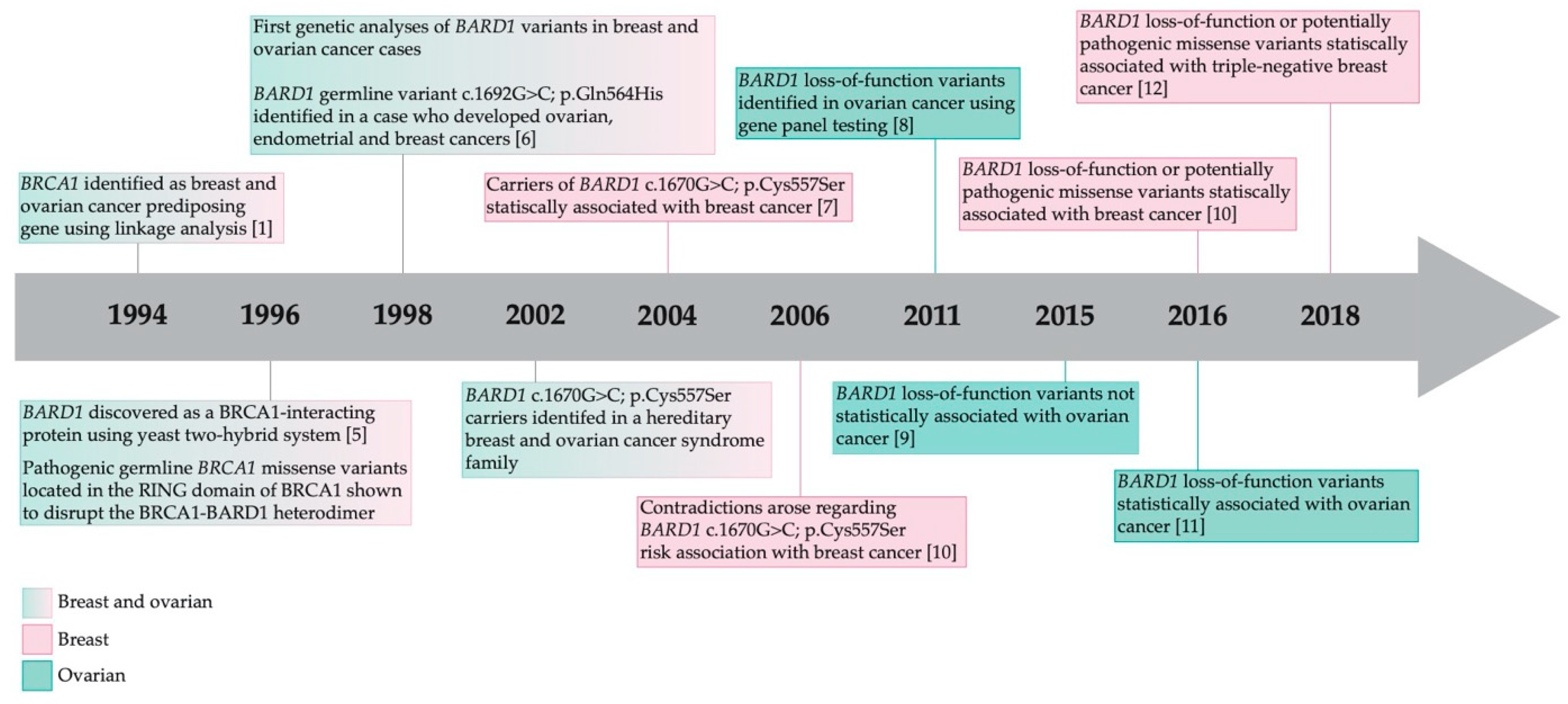 Genes Free Full Text Literature Review Of Bard1 As A Cancer Predisposing Gene With A Focus On Breast And Ovarian Cancers