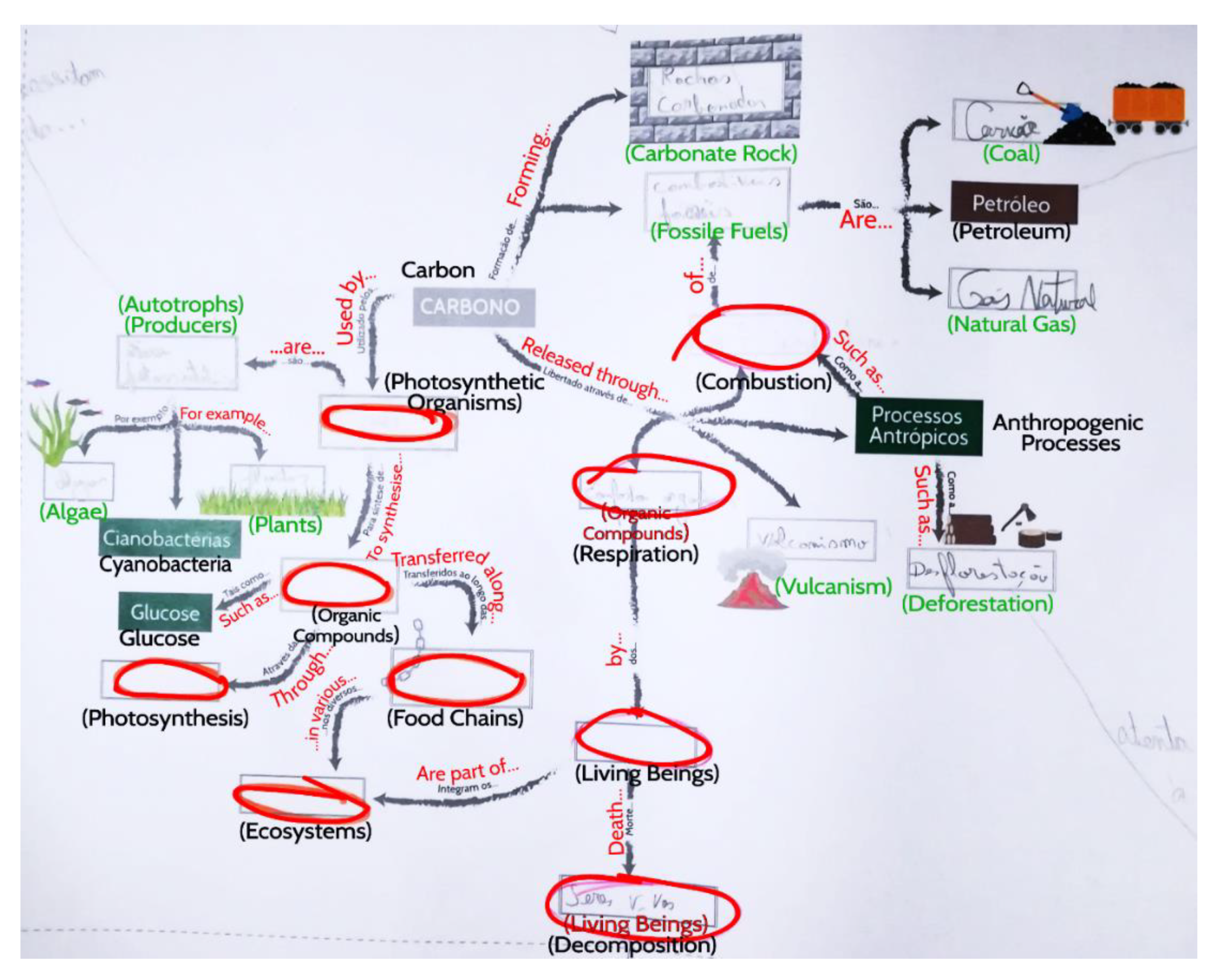 Geosciences Free Full Text Improved Concept Map Based Teaching To Promote A Holistic Earth System View Html