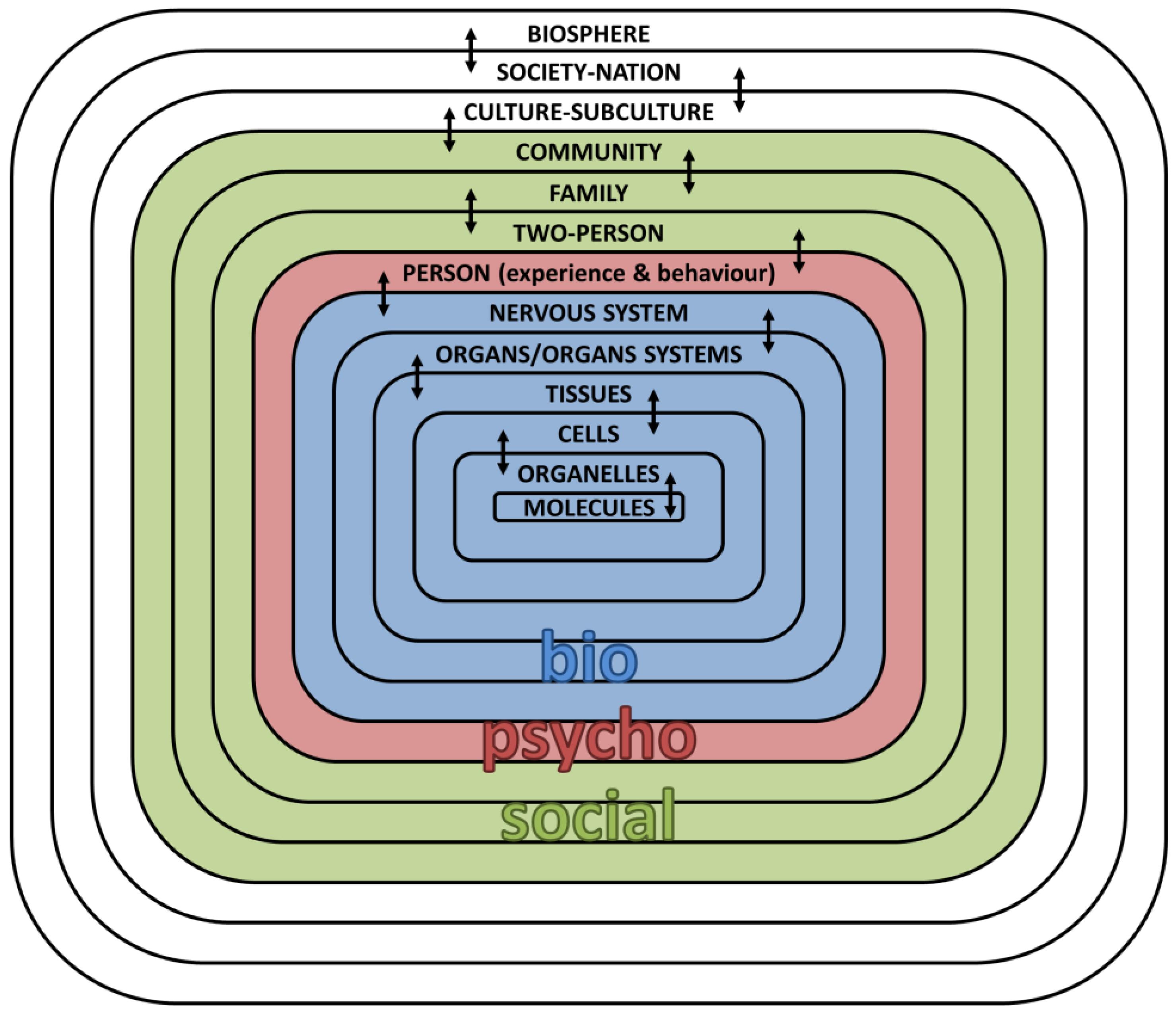 biomedical model of health definition