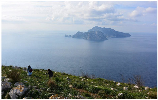 Heritage Free Full Text Capri S Touristification A Millennial Cultural Landscape Reinvented By Luxury Tourism Html