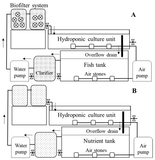 The Occurrence of Shiga Toxin-Producing E. coli in Aquaponic and Hydroponic Systems