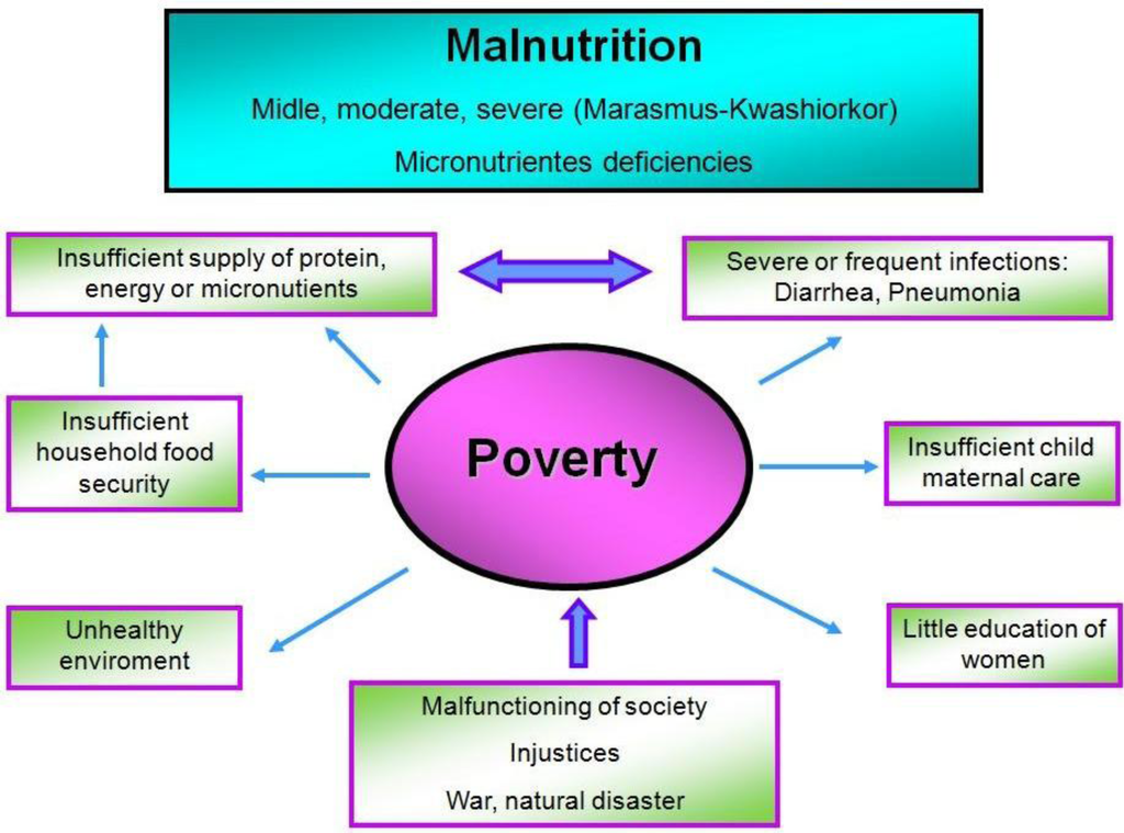 understanding the problem of hunger and its effects on children Hunger and poverty: definitions and  project treats hunger as a symptom of the problem of  hunger and poverty: definitions and distinctions.