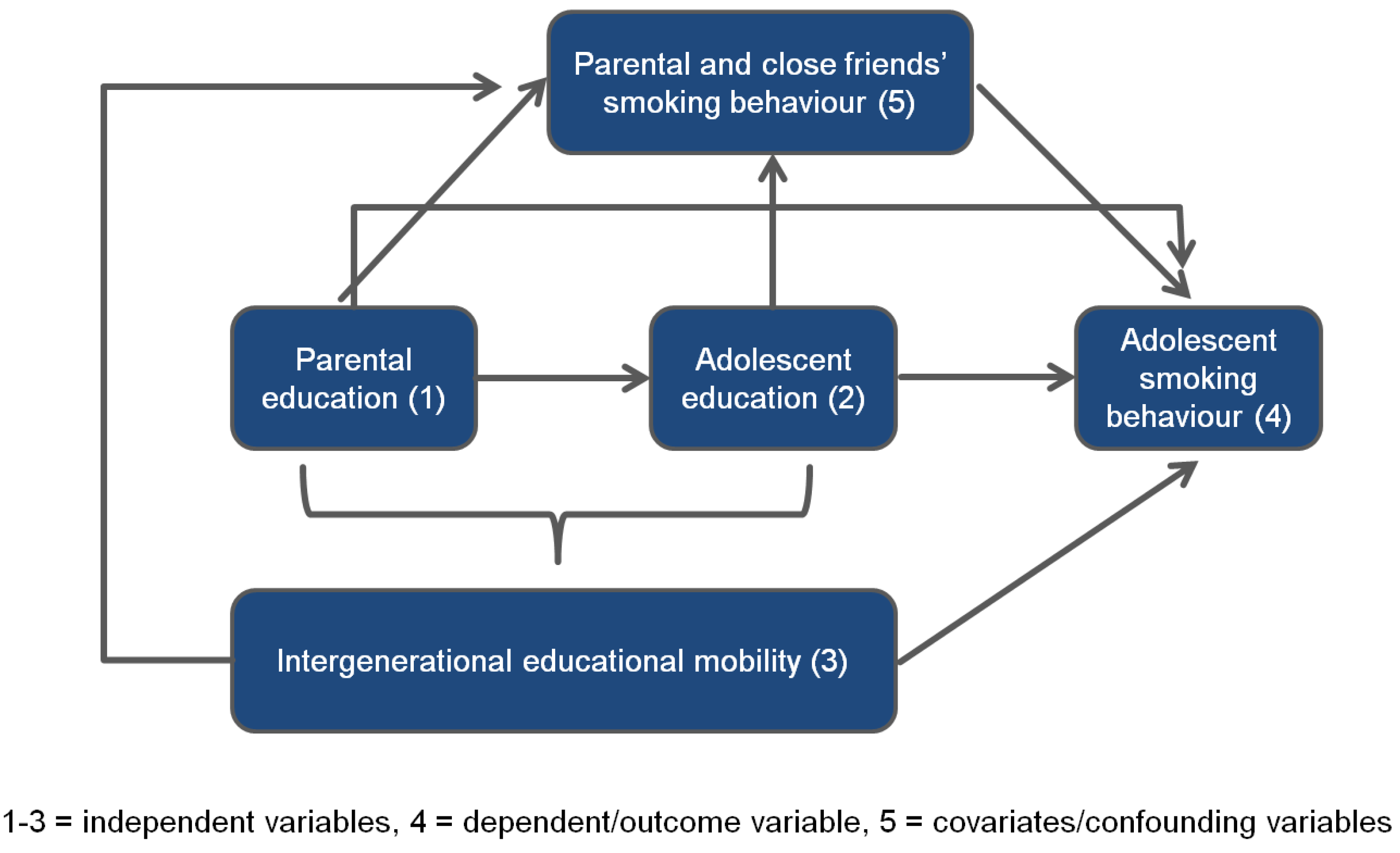 The Role Of Independent Educational >> Ijerph Free Full Text Educational Differences In Smoking Among