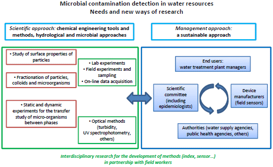 IJERPH | Free Full-Text | Microbial Contamination Detection in Water