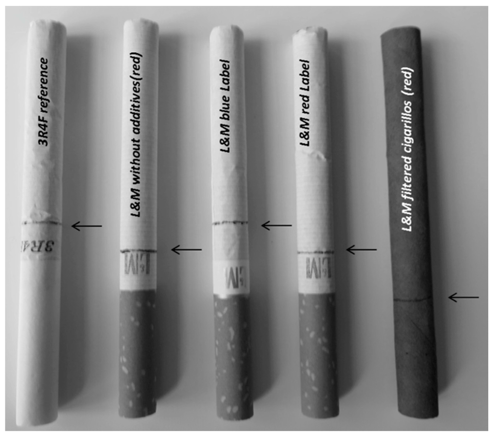 thesis statement for not smoking cigarettes The effects of smoking essaysthere are an assortment of effects of smoking that can harm a smoker they can affect not only the smoker's health but also the non-smokers around the smoker.
