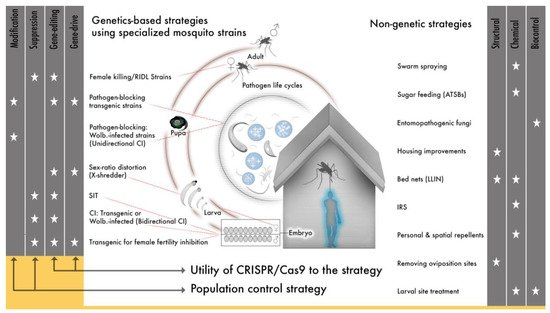 Ijerph Free Full Text Gene Drive For Mosquito Control Where Did It Come From And Where Are We Headed Html