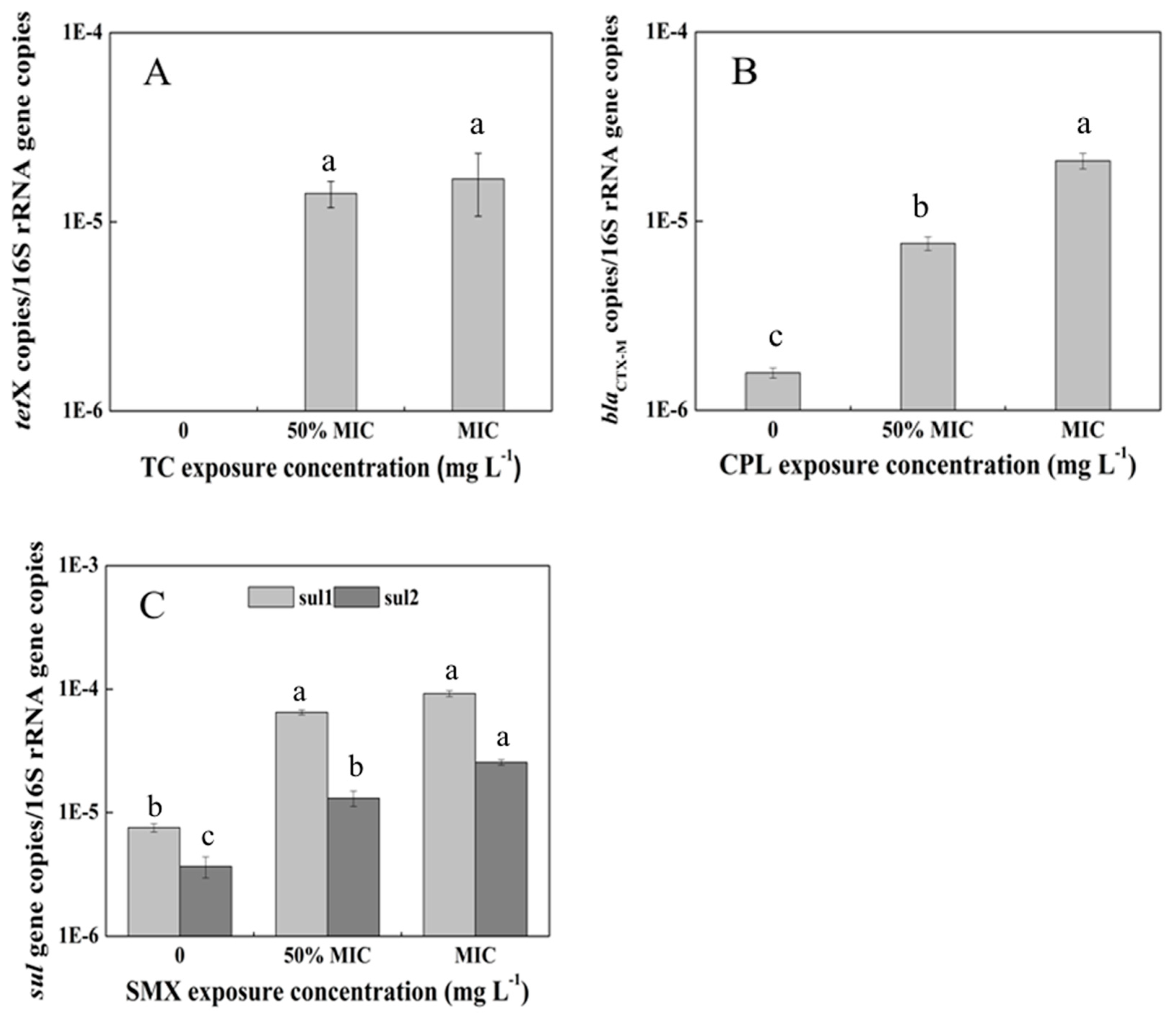 Exposure To Antimicrobials During >> Ijerph Free Full Text Plant Growth Antibiotic Uptake