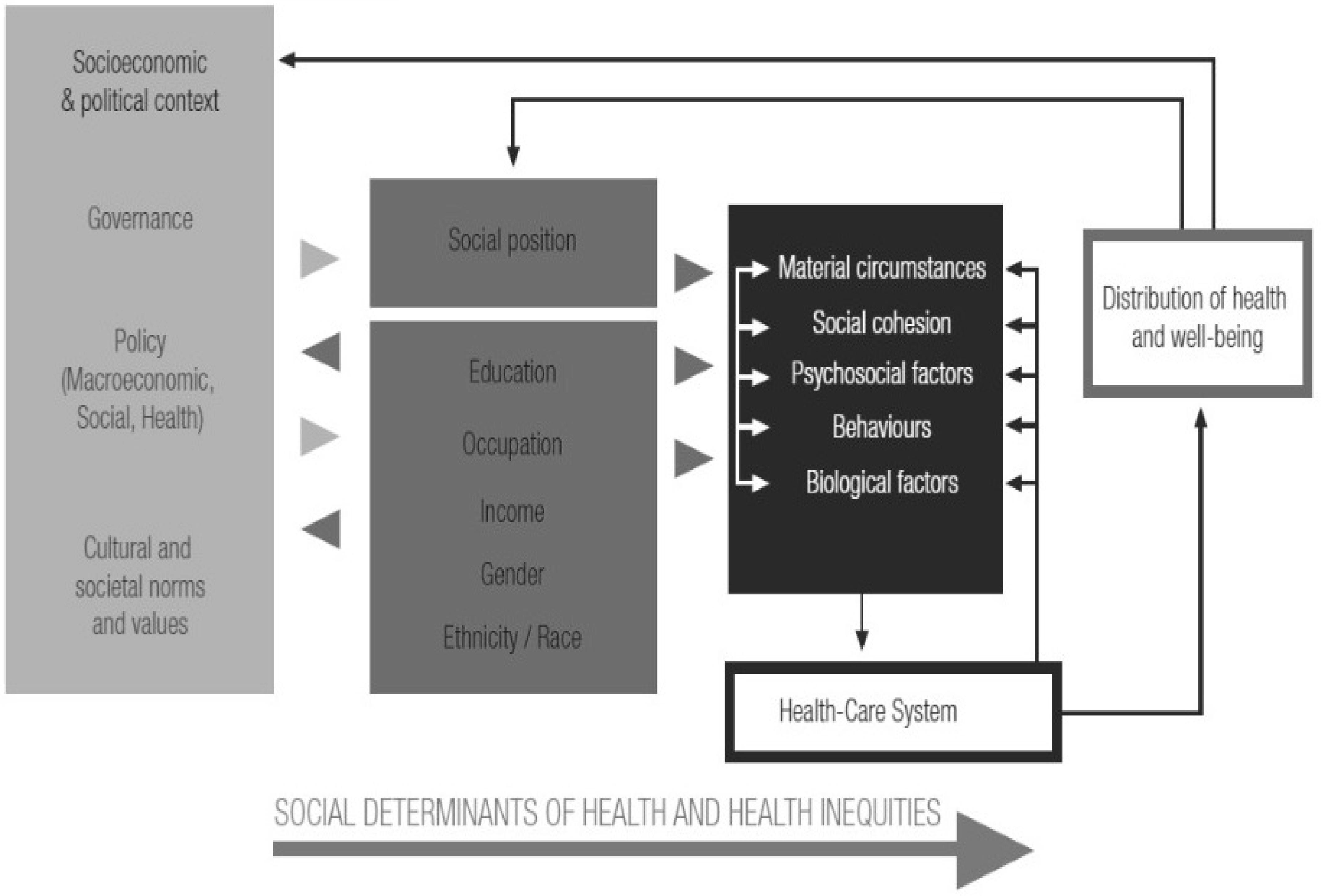 Social determinants of health essay