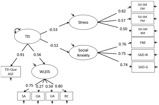 IJERPH | Special Issue : Stress, Coping, and Resilience in