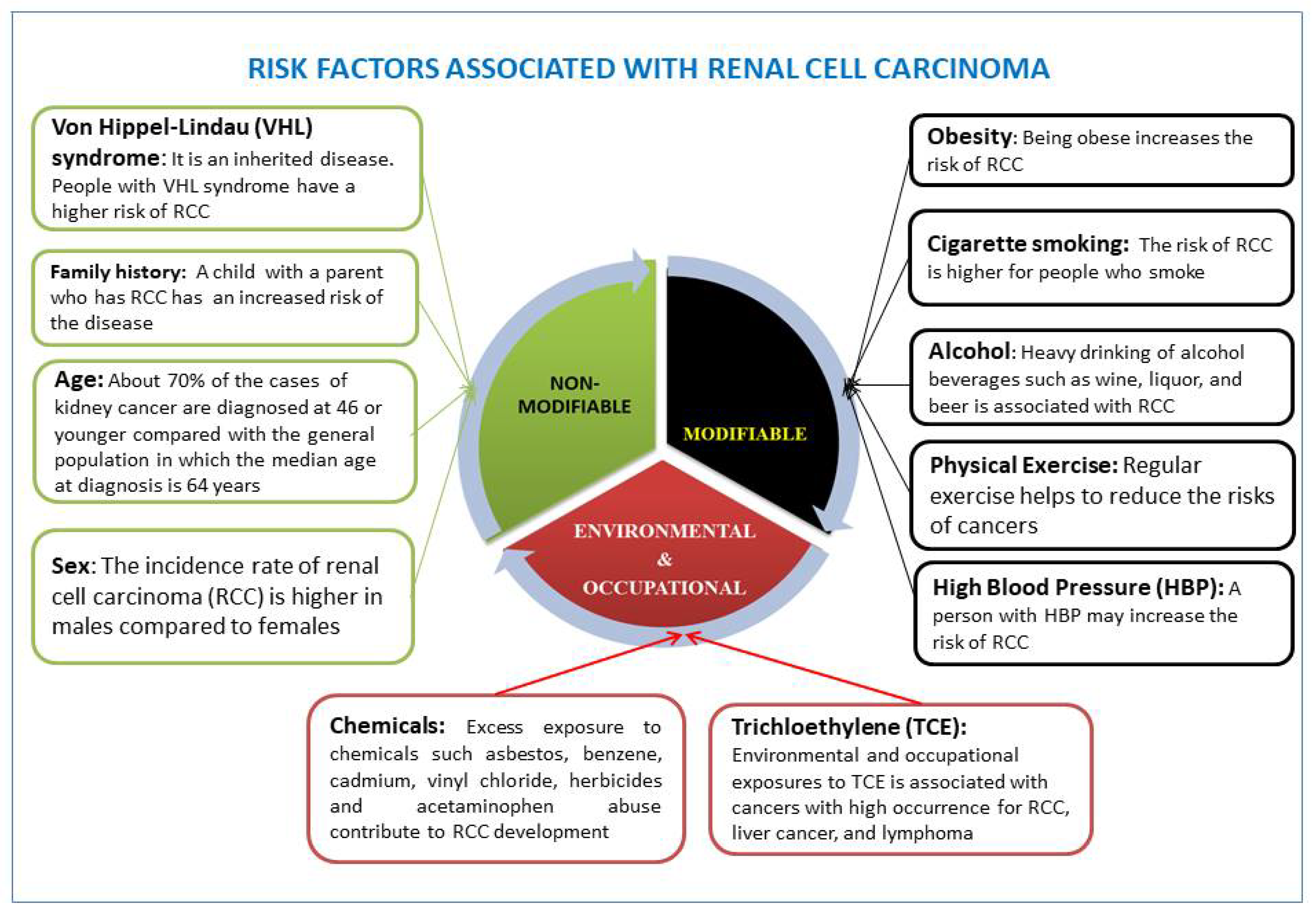 Ijerph Free Full Text Racial Disparities And Preventive Measures To Renal Cell Carcinoma Html