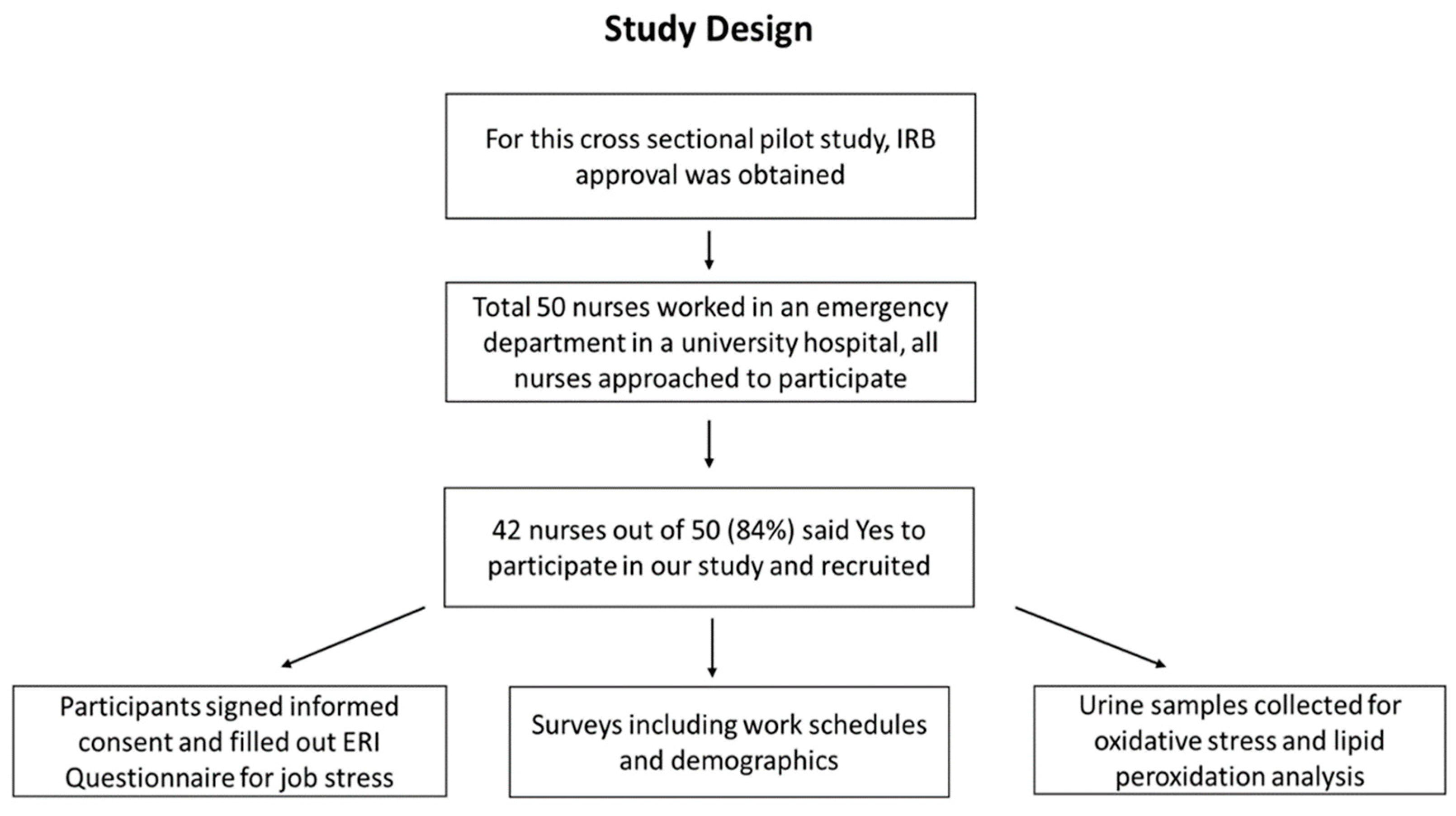 IJERPH | Free Full-Text | A Cross Sectional Study Evaluating