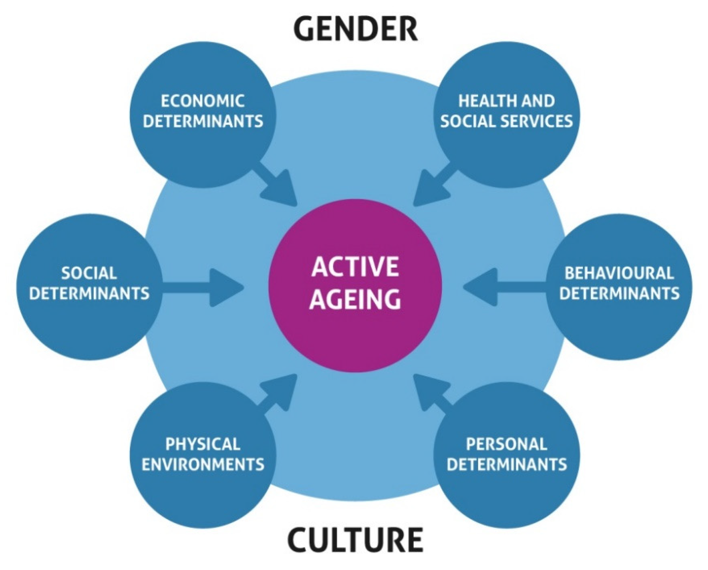 IJERPH | Free Full-Text | Determinants of Active and Healthy ...