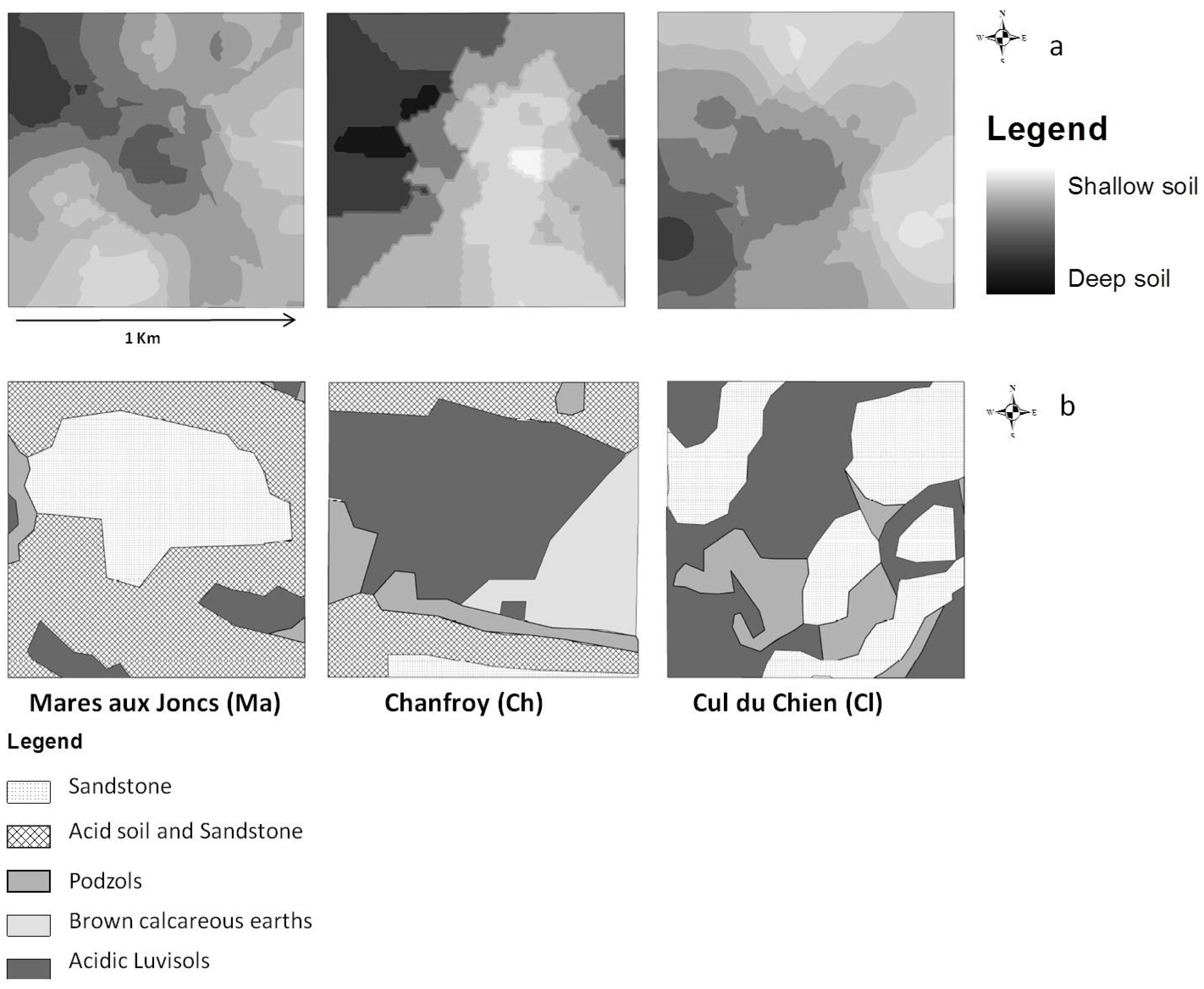 Ijgi free full text the spatiotemporal dynamics of for Soil 60 years
