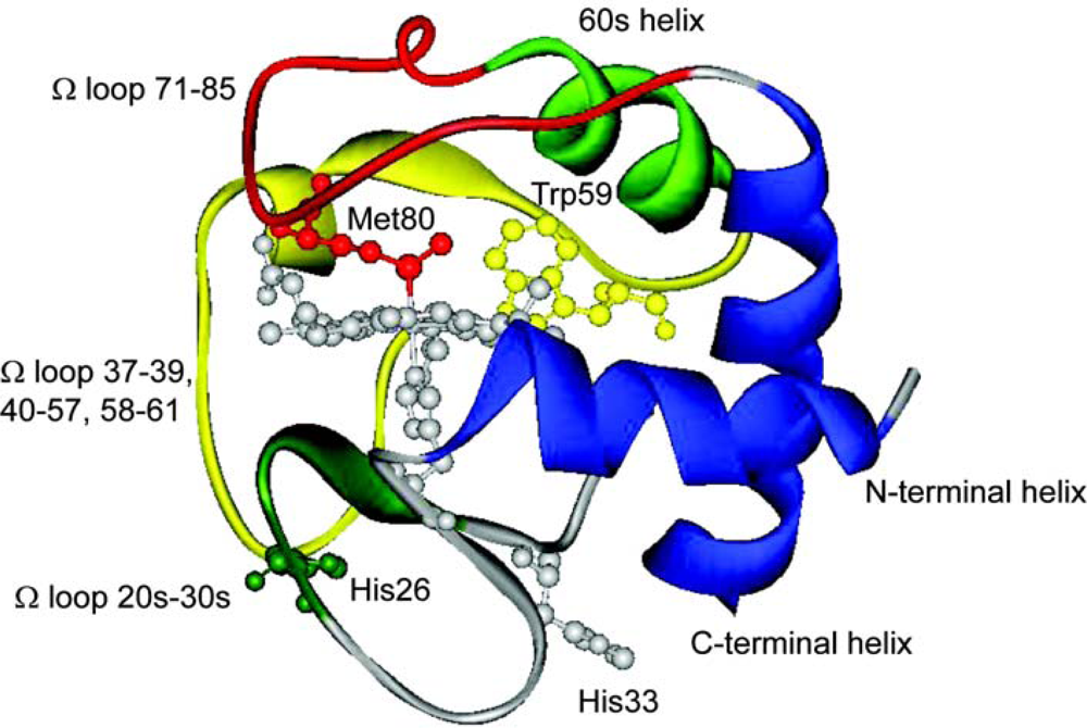 cytochrome c comparison You have free access to this content comparing the substrate specificities of cytochrome c biogenesis systems i and ii bioenergetics.