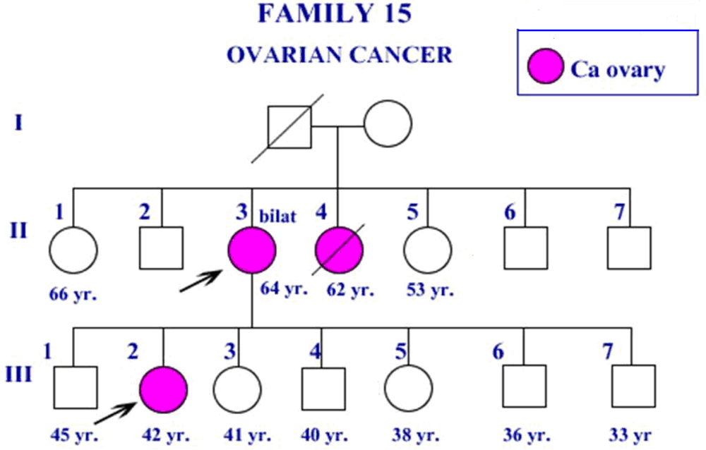 an analysis of the formation of pedigree in a family A pedigree chart is a description of a patient's family history for genetic diagnosis purposes, pedigree information is important for evaluation of the incidence of a disease and any associated mutations in a patient's family.