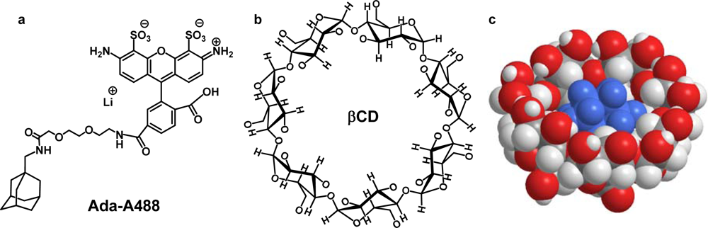 cyclodextrin thesis