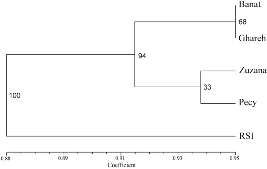 Ijms Free Full Text Estimation Of The Genetic