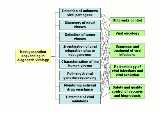 applications of next generation sequencing ngs in virology pdf
